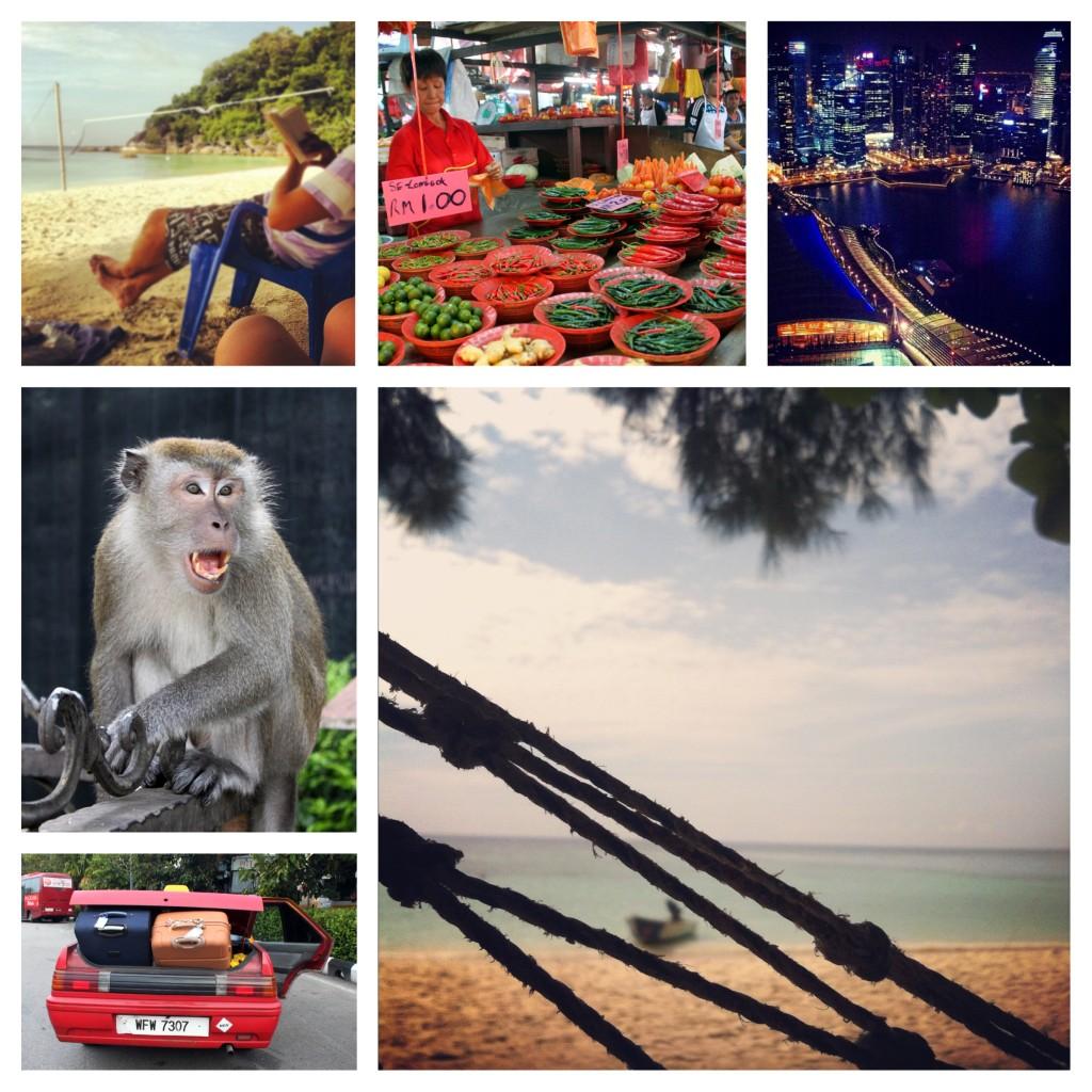 8 - Malesia