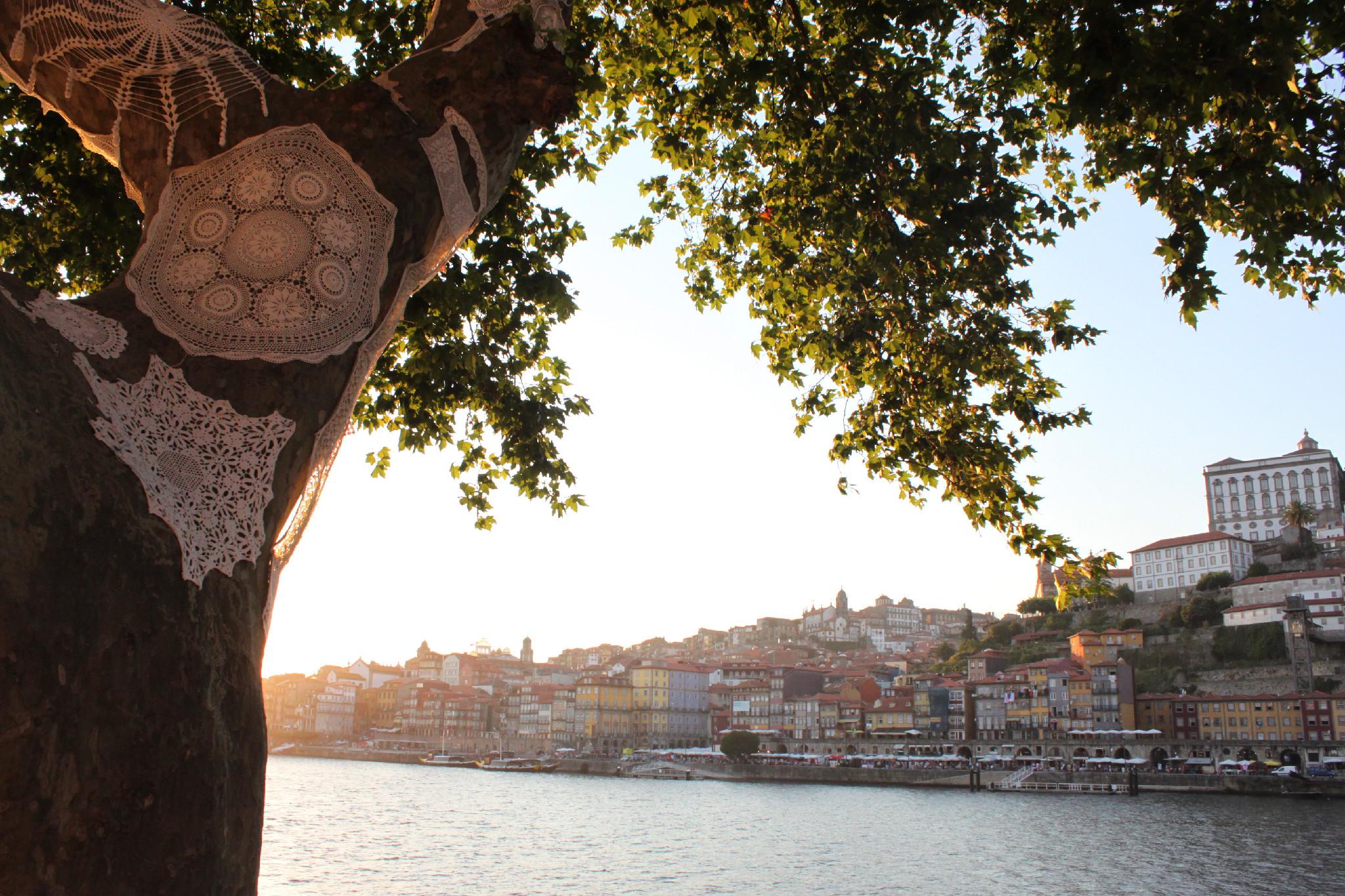 Il tramonto sul fiume Douro