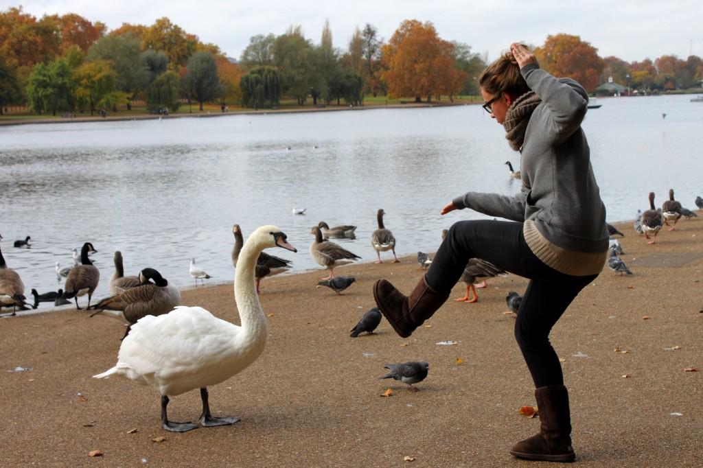 Mia sorella che gioca coi cigni a Hyde Park