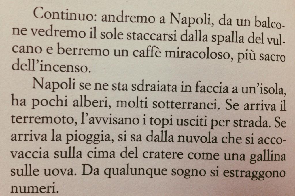 andremo a Napoli, da un balcone vedremo il sole staccarsi dalla spalla del vulcano e berremo un caffè miracoloso, più sacro dell'incenso