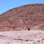Un coraggioso in bicicletta disperso nel nulla