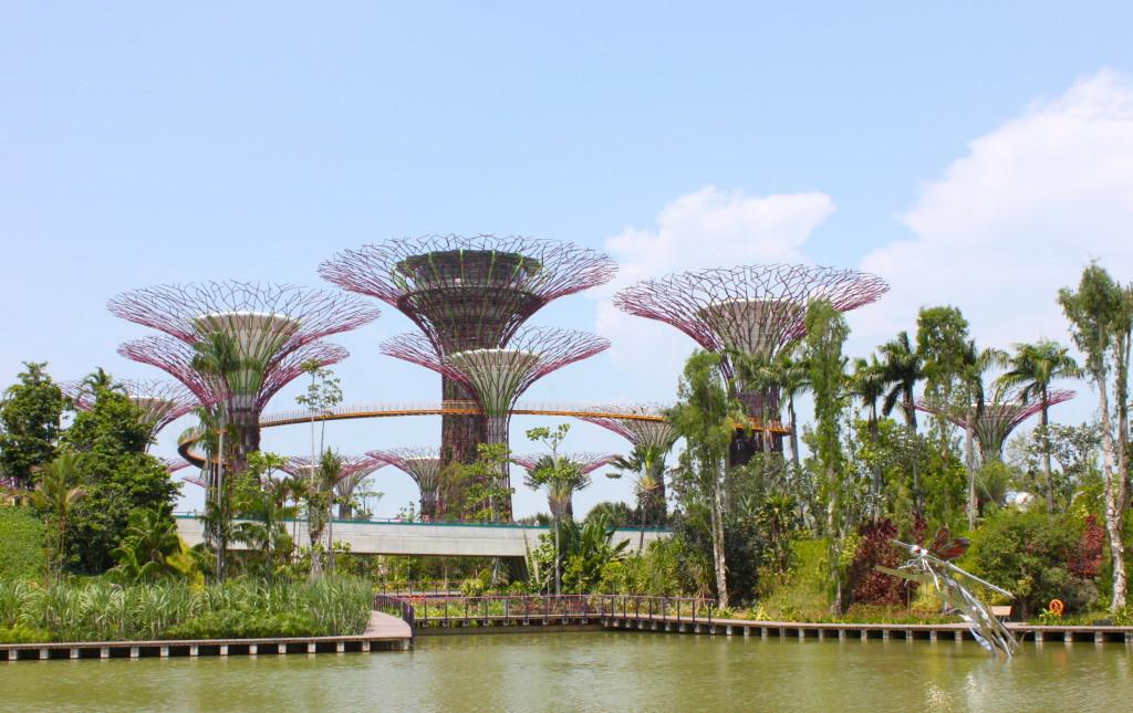 Giardini e architettura a Singapore - Gardens by the bay