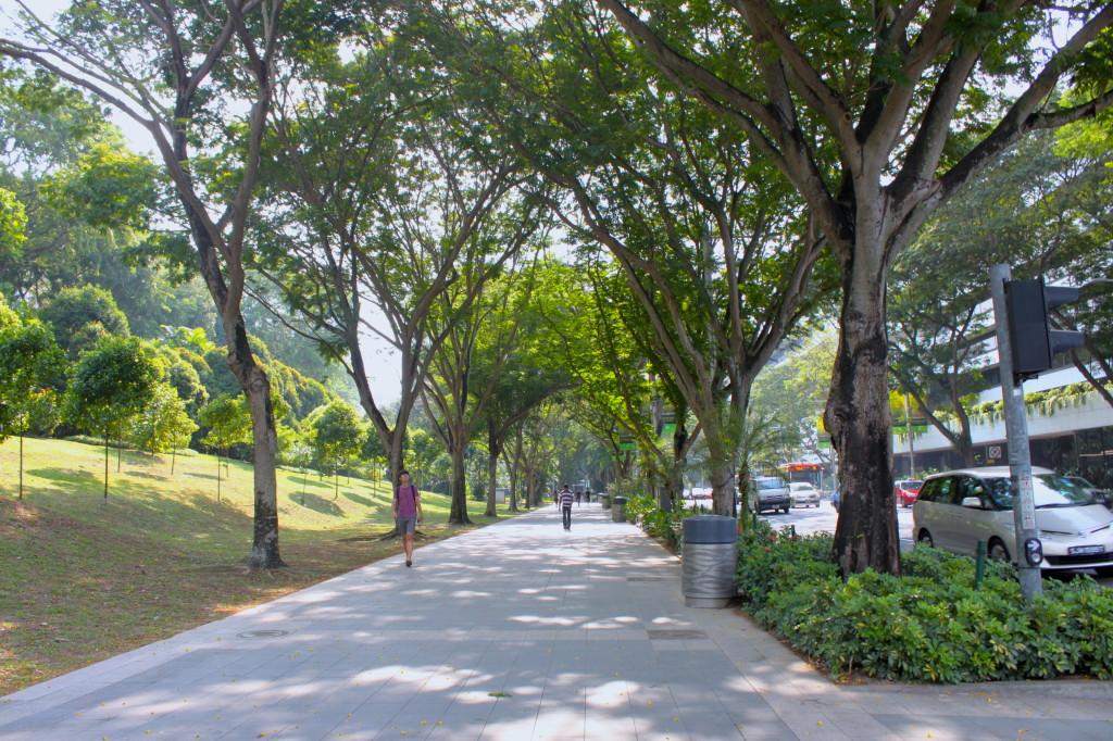 Orchard Road, la via dello shopping di singapore