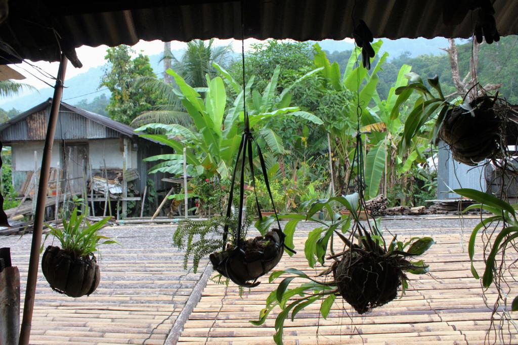 villaggio headhunters borneo, malesia