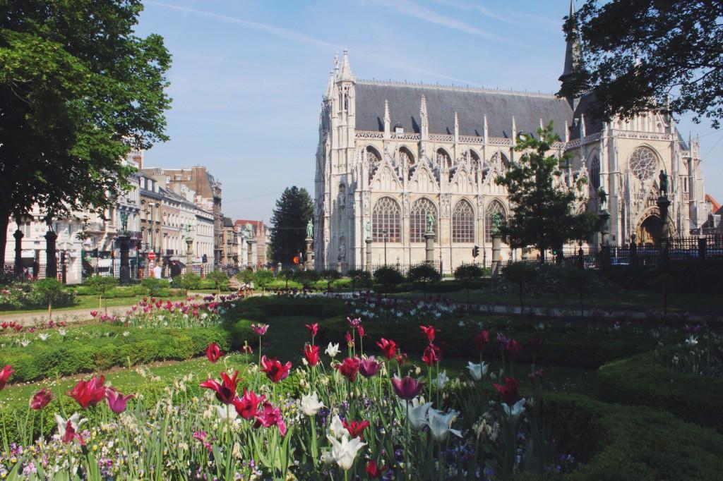 I fiori a Bruxelles colorano tutto