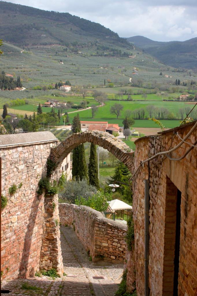 E poi dopo Spello tutta l'Umbria verdissima