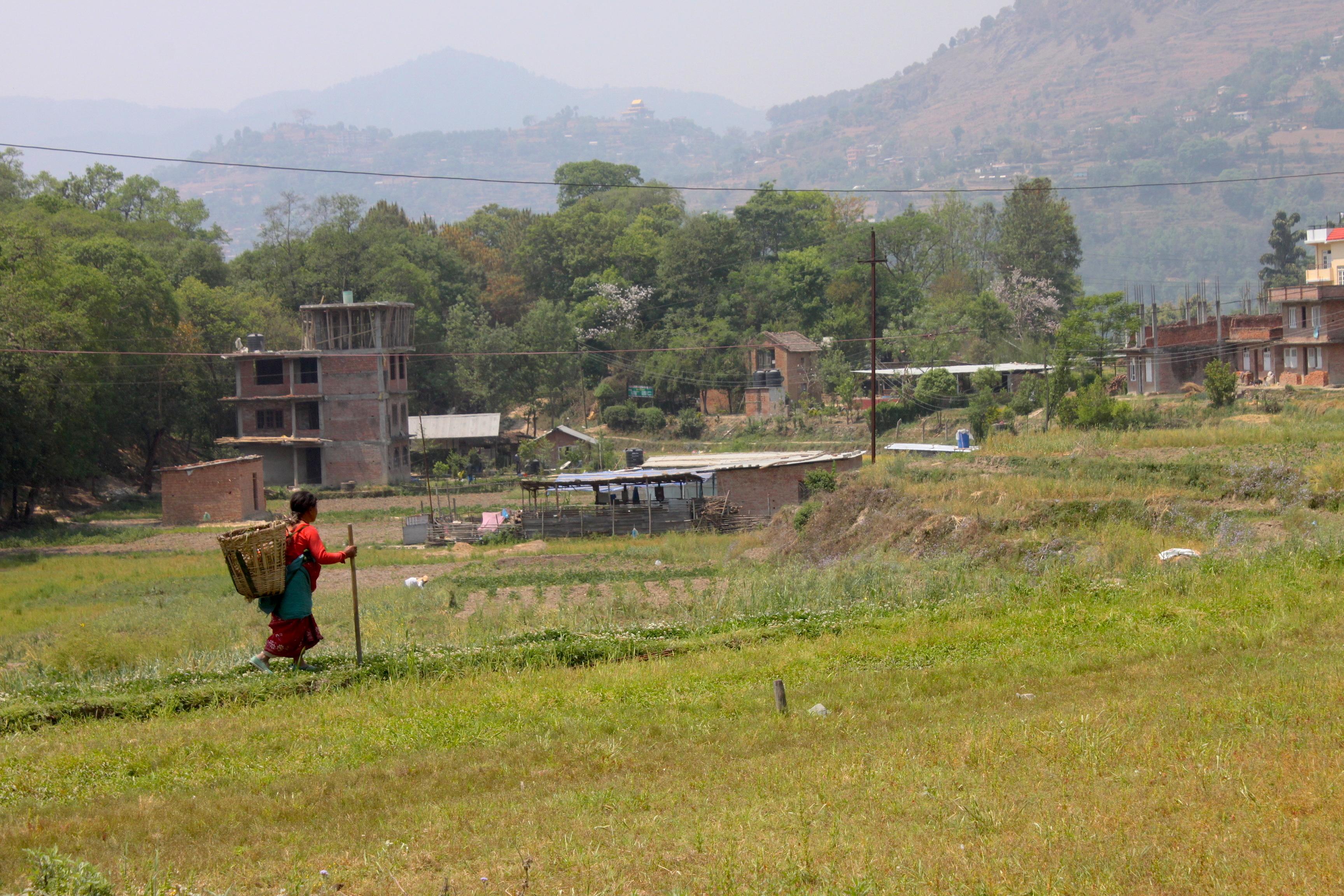 I campi di Khokana