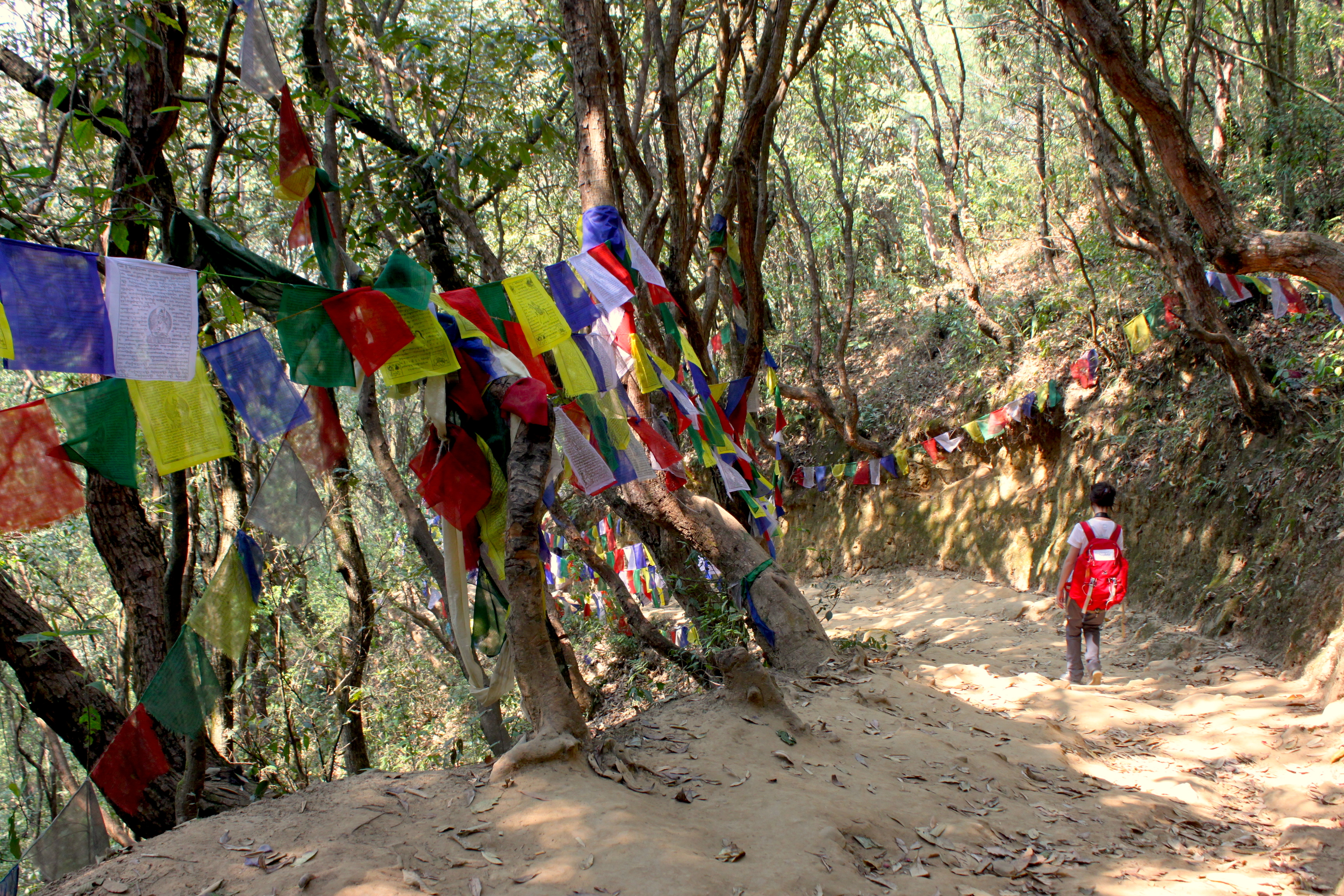 Il sentiero verso Namobuddha