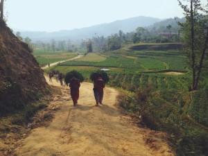 Camminando verso Panauti