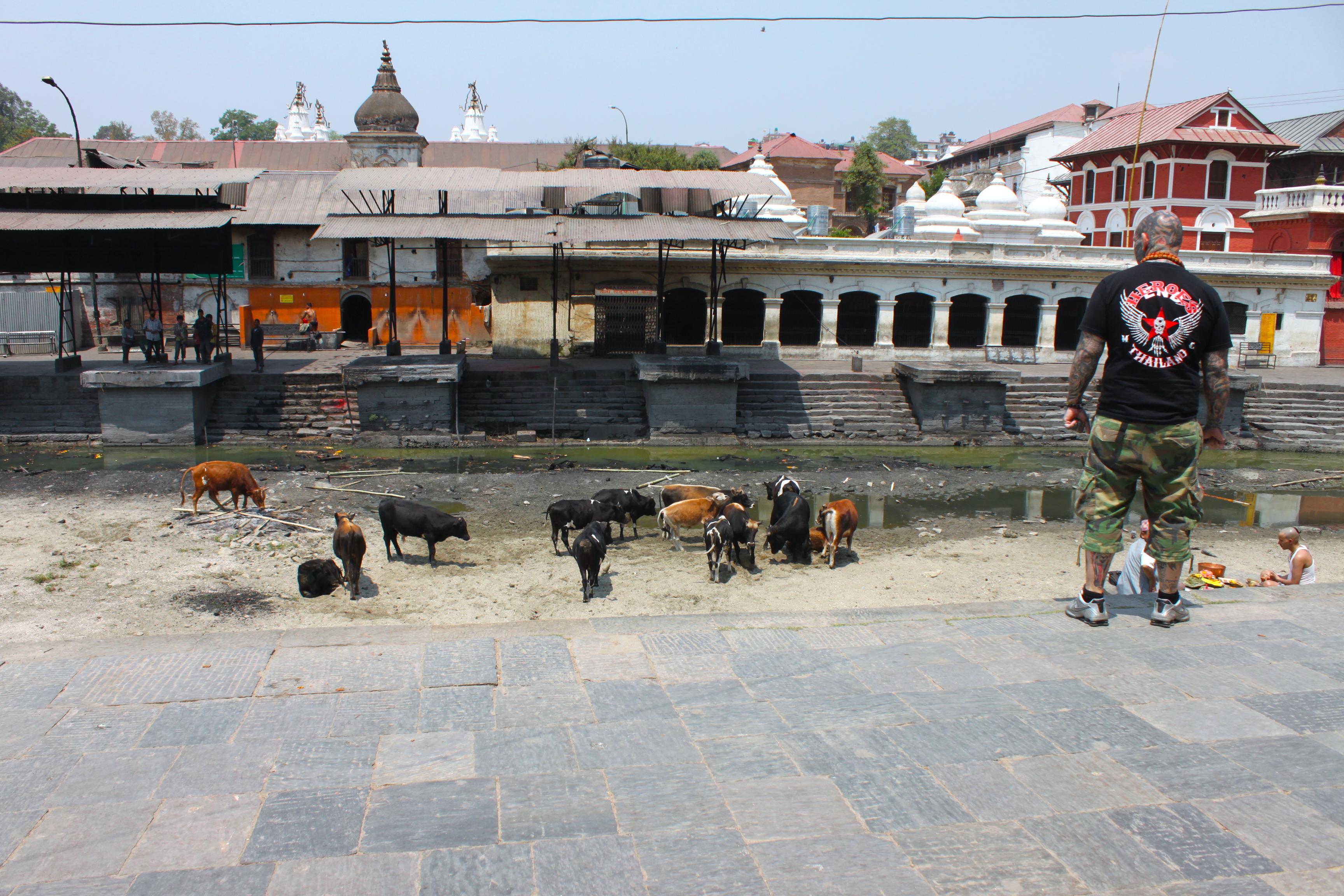 tempio pashupatinath in nepal