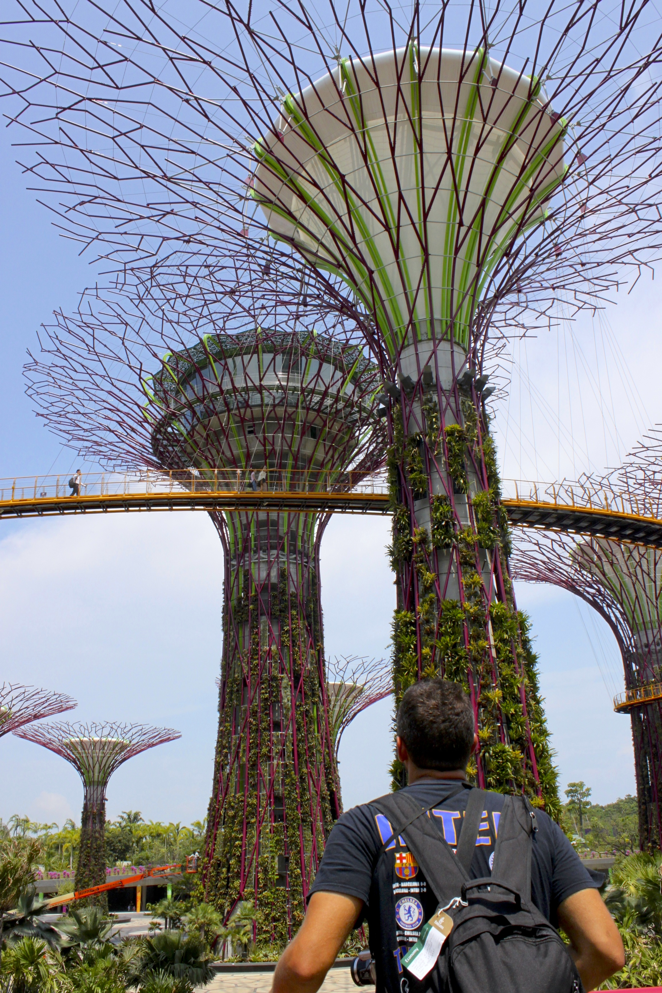 Gardens by the bay, pazzeschi