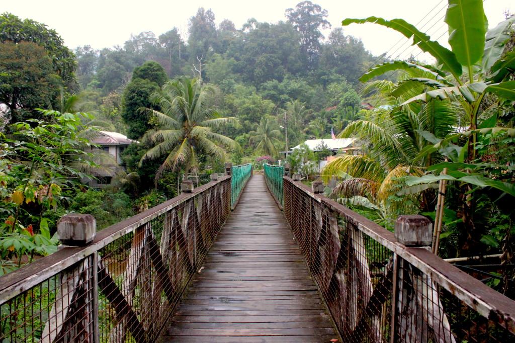 Dal villaggio Iban alla giungla