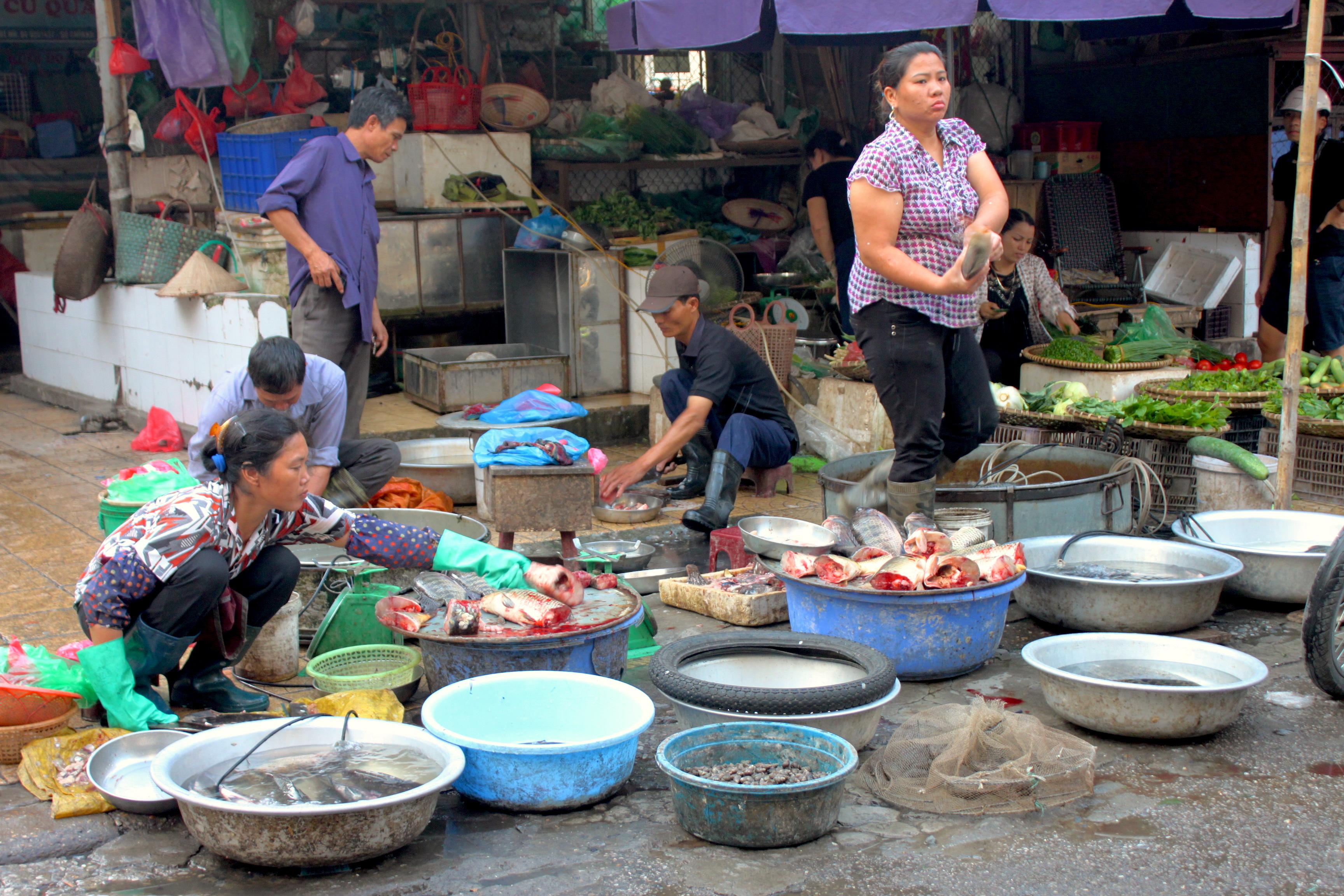 Il mercato del pesce, molto molto fresco