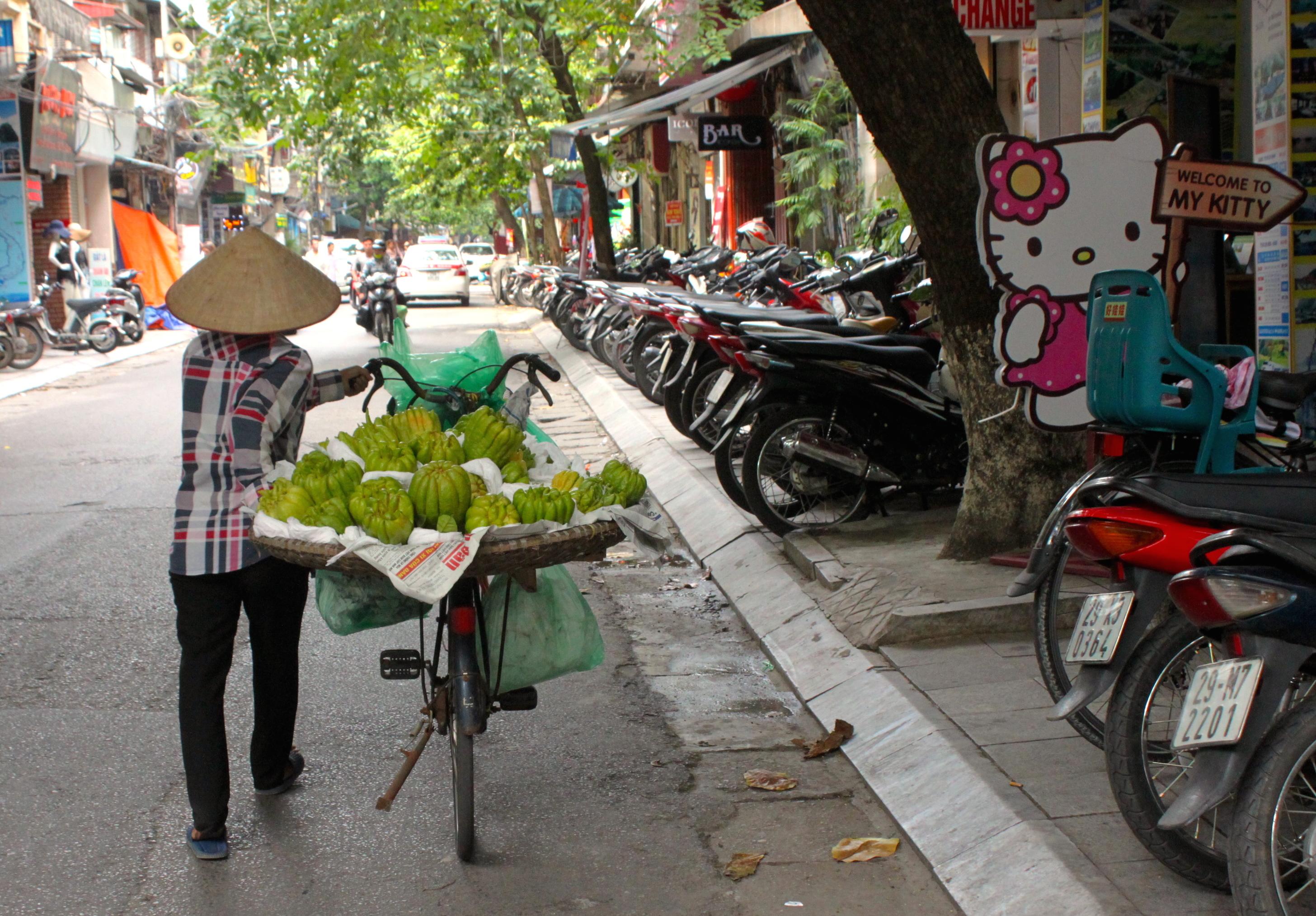 Tutti i Vietnam dentro una sola città