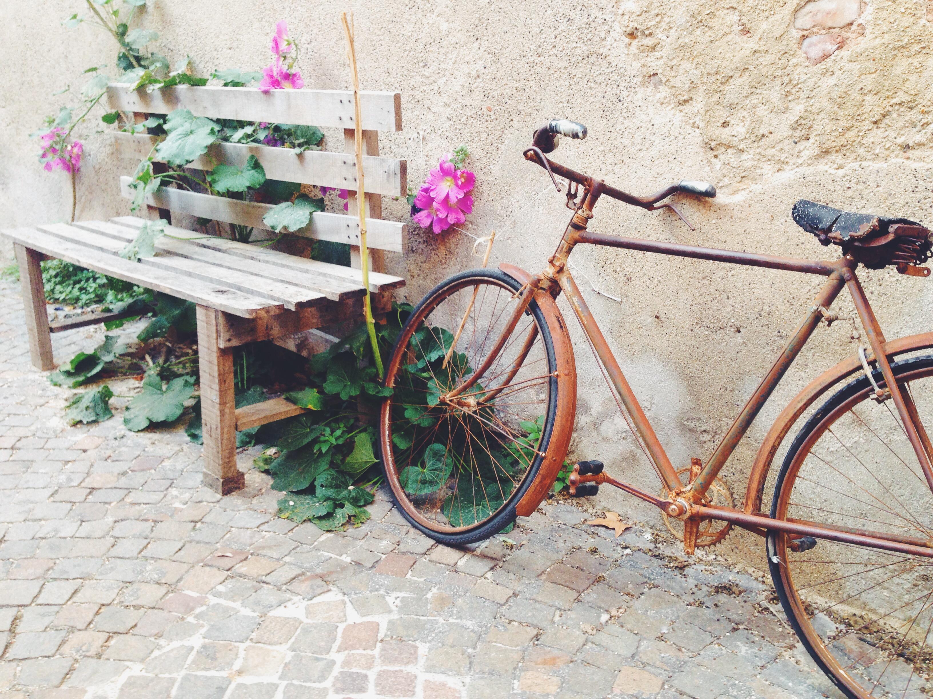 Le bici mi appassionano sempre. È che penso a dove potrebbero portarmi