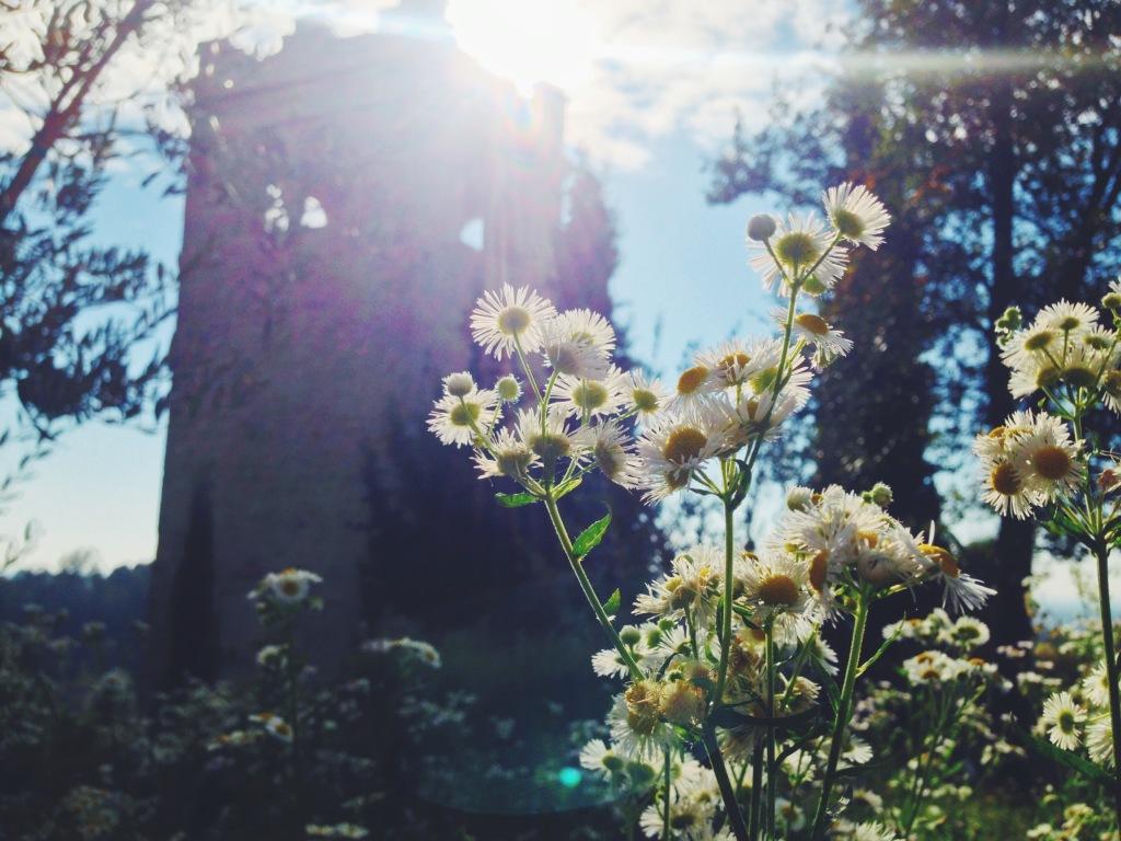 Torre degli Ezzelini a San Zenone