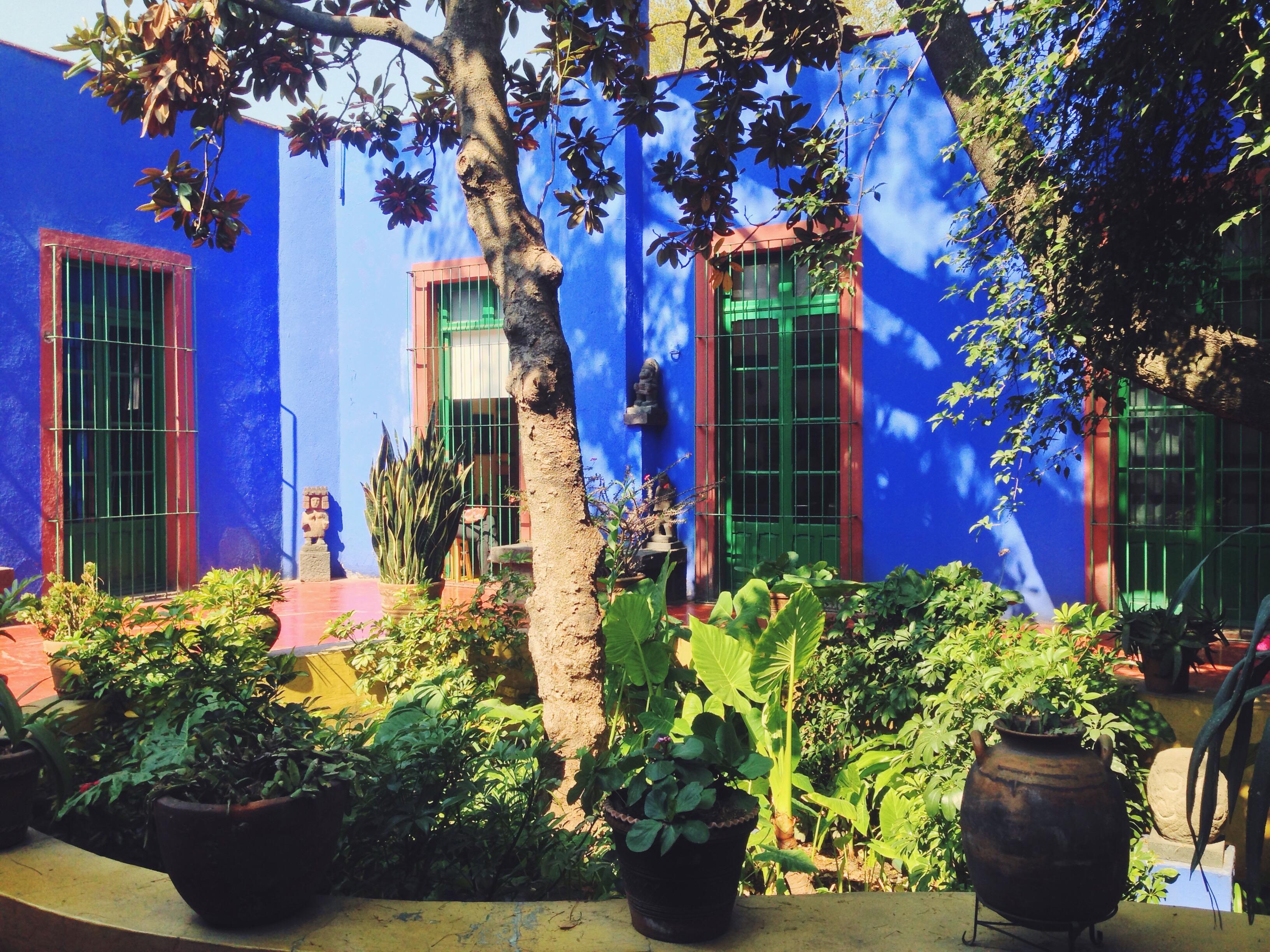 Casa Azul, cortile