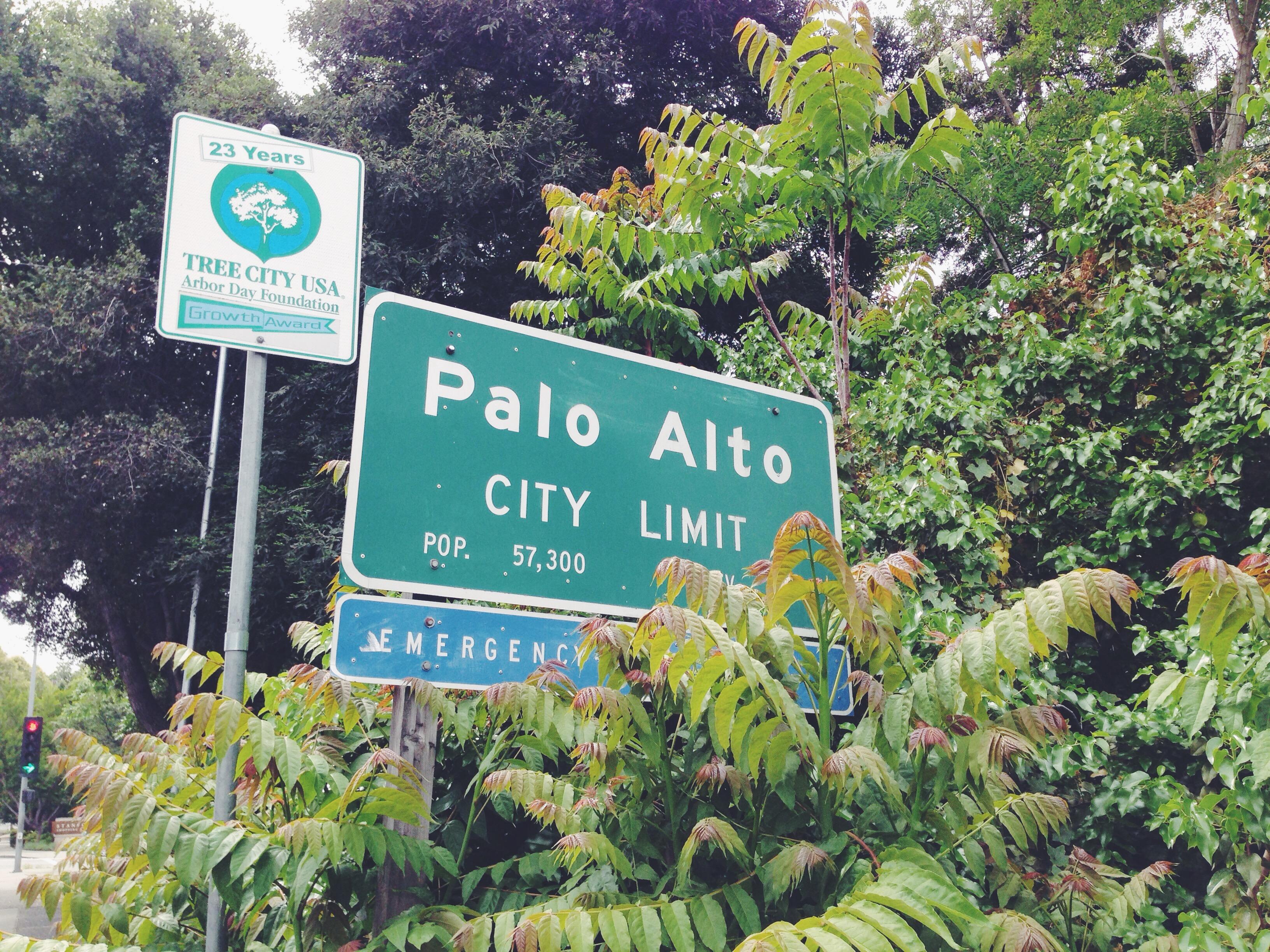 Un giorno a Palo Alto
