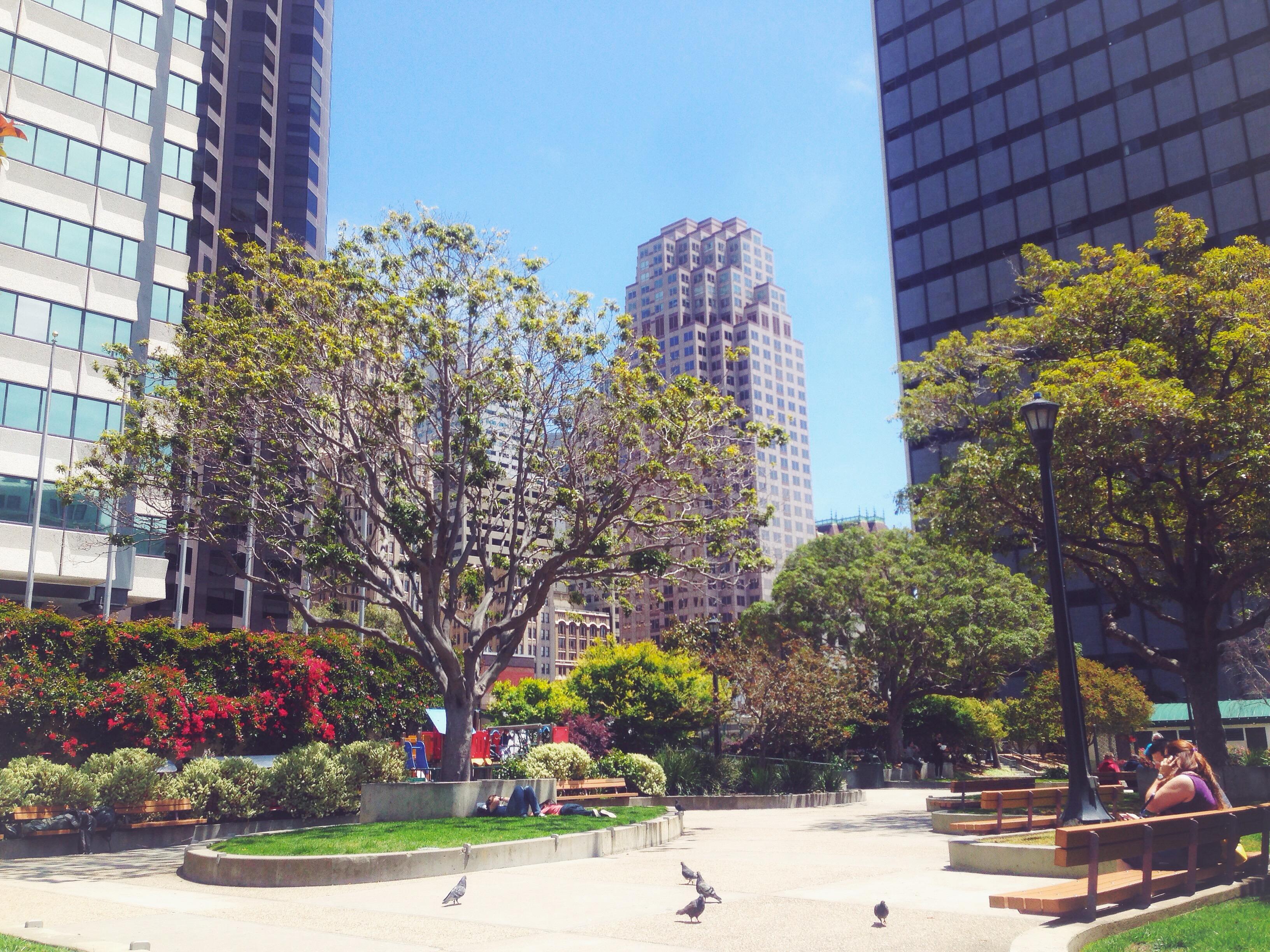 Il mio posto preferito a San Francisco