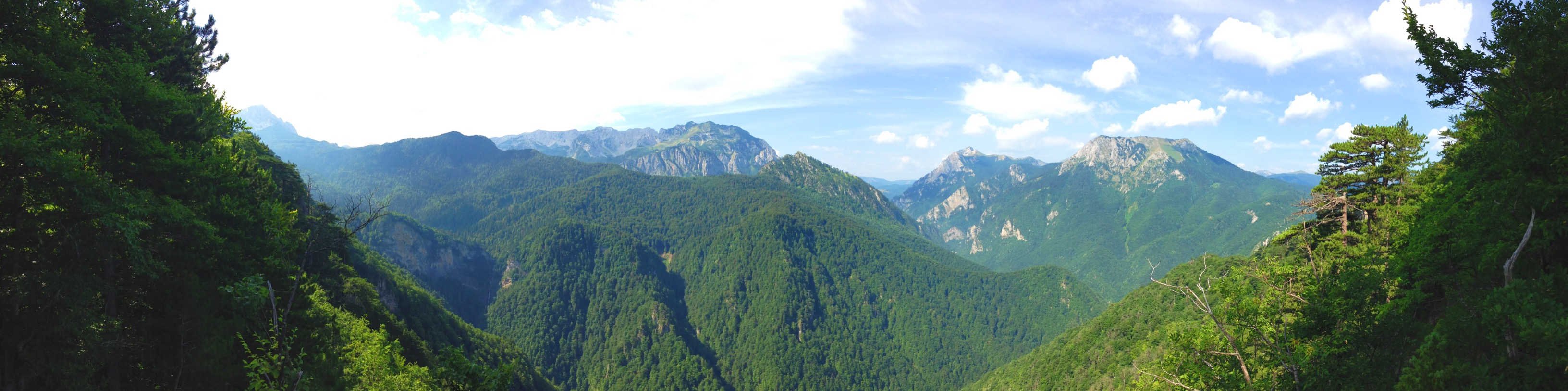 Foreste in Montenegro