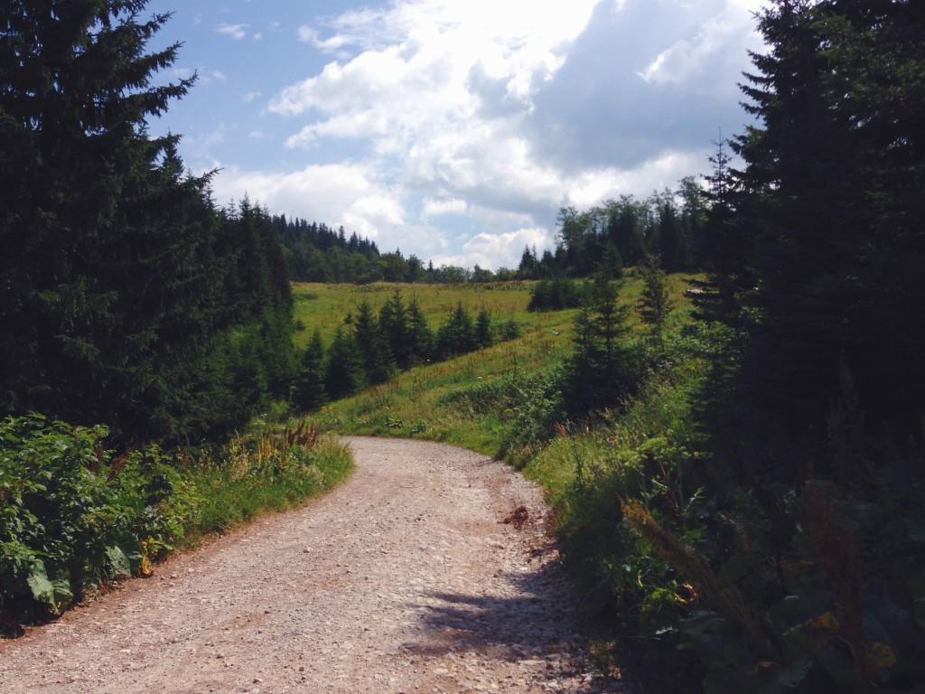 Sentiero in Bosnia