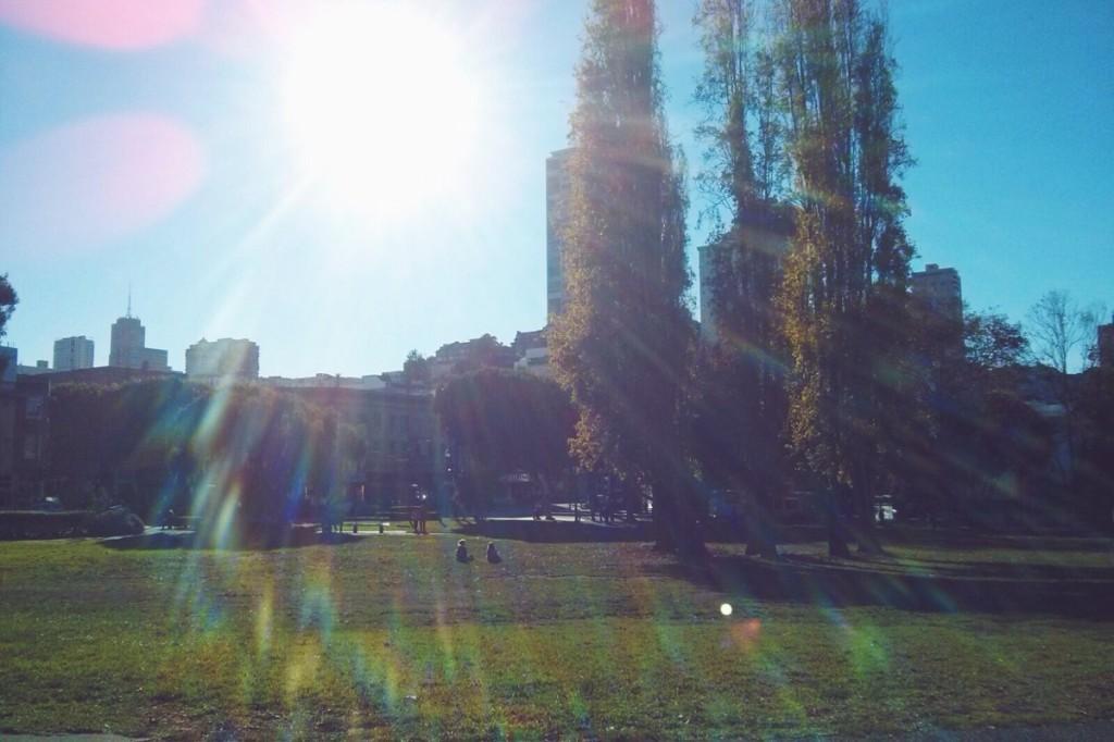Il sole che ogni giorno - OGNI GIORNO - scalda la pelle, le ossa e i pensieri