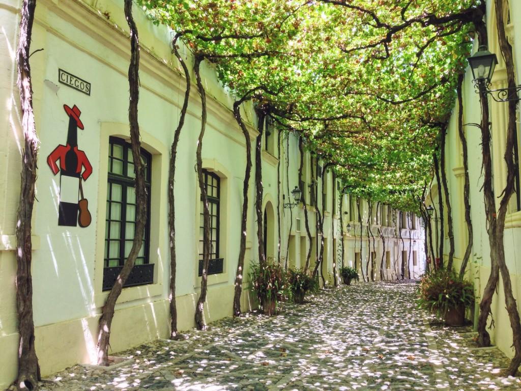 Jerez de la Frontera profuma di vino in tutte le sue stradine