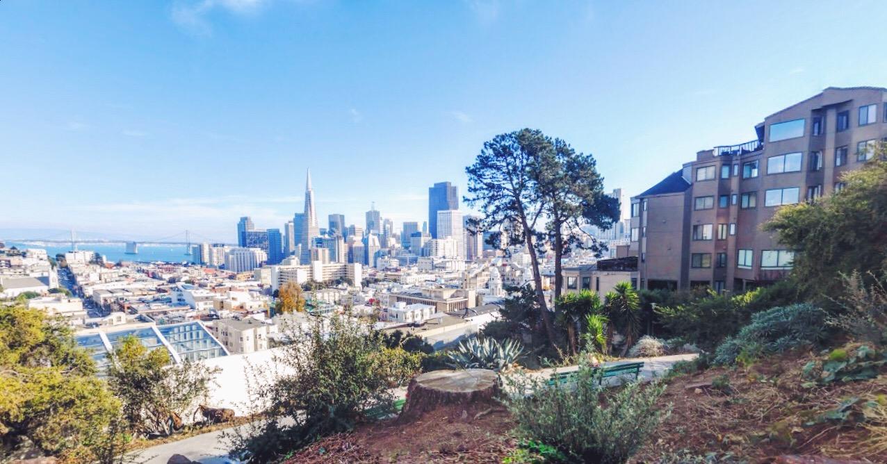 Uno dei parchi più belli da non perdere a San Francisco