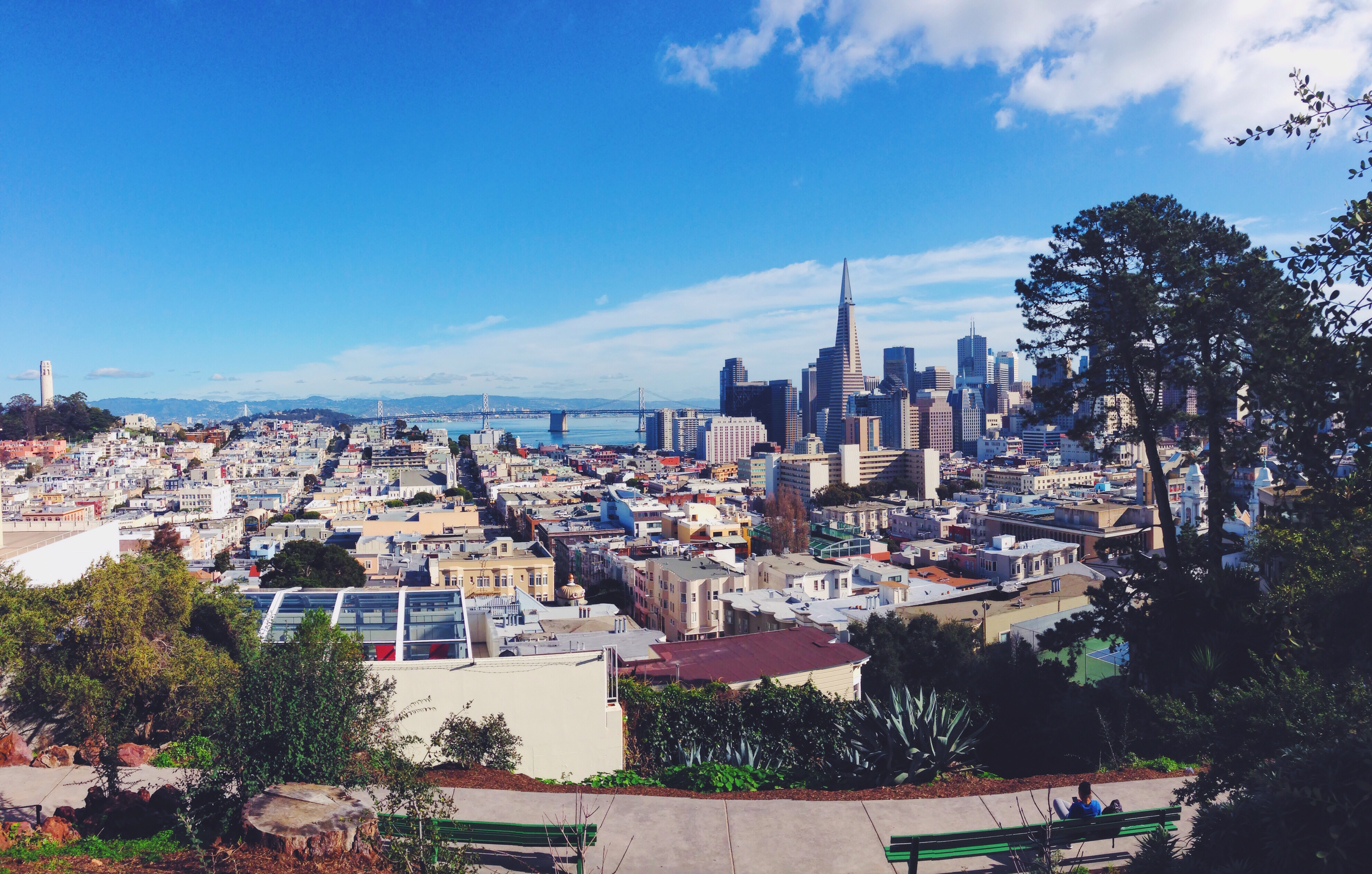 vista dall'alto di San Francisco