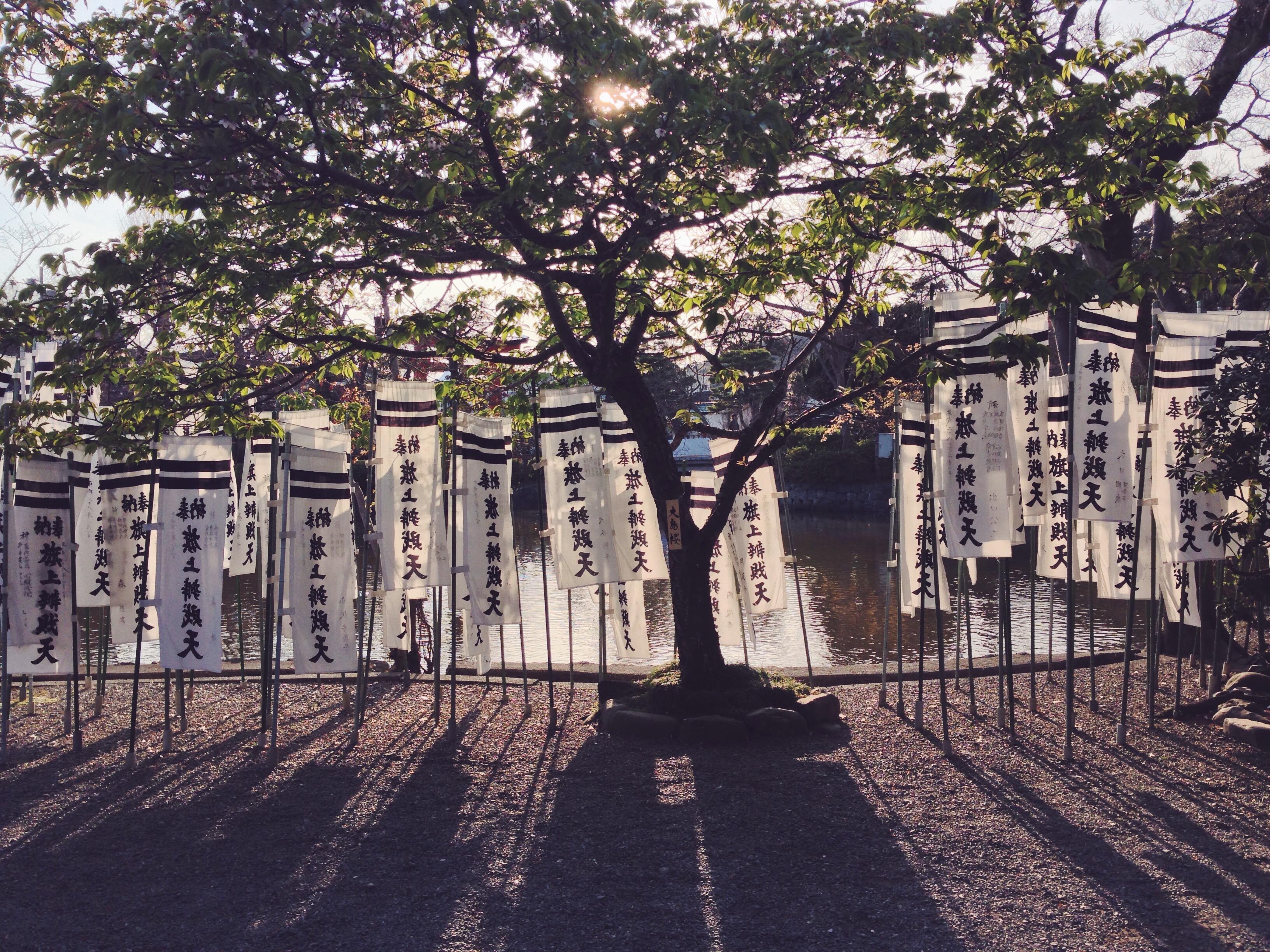 Cosa vedere a Kamakura
