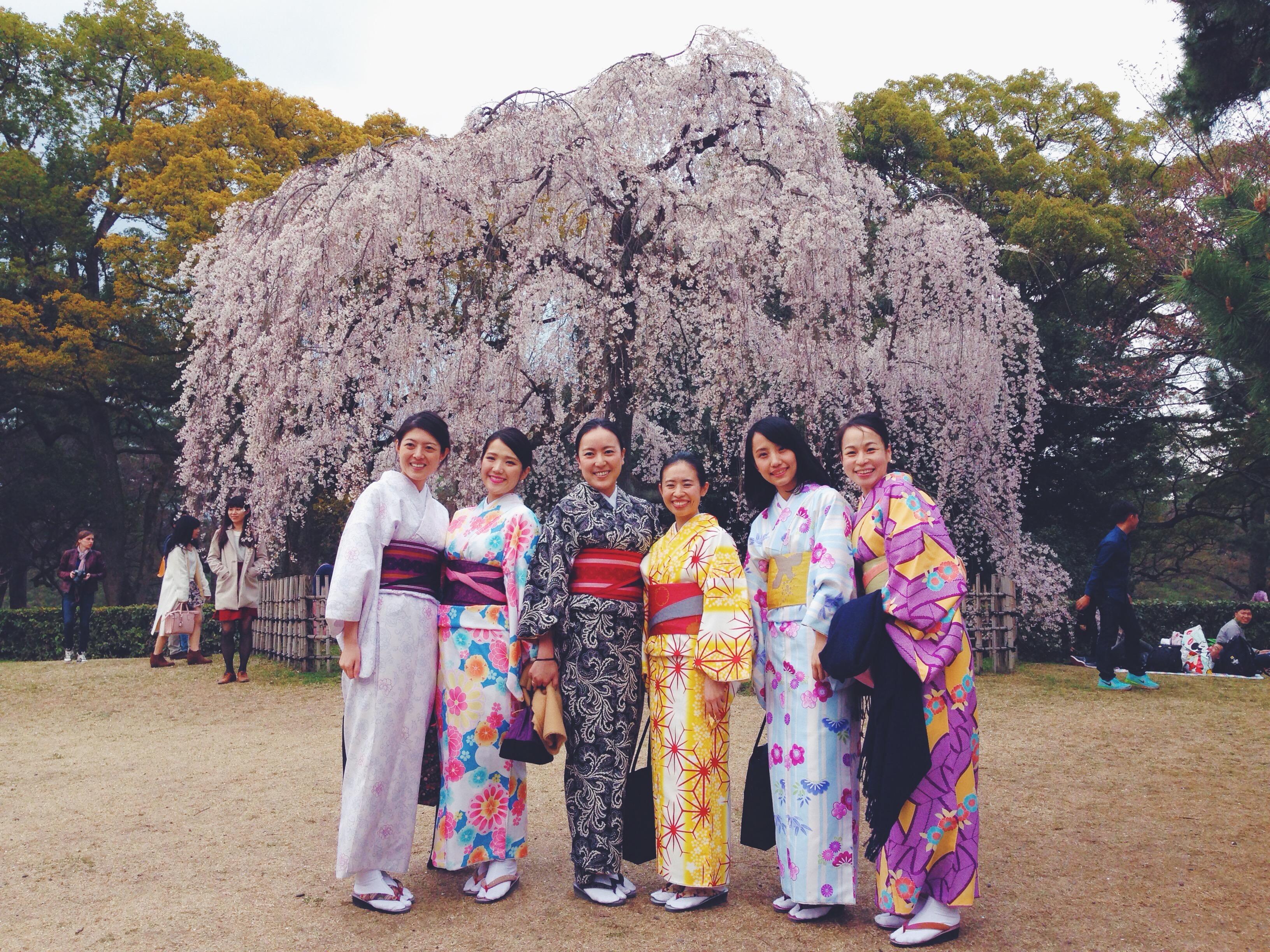 I ciliegi e i kimono al Kyoto Imperial Palace Park