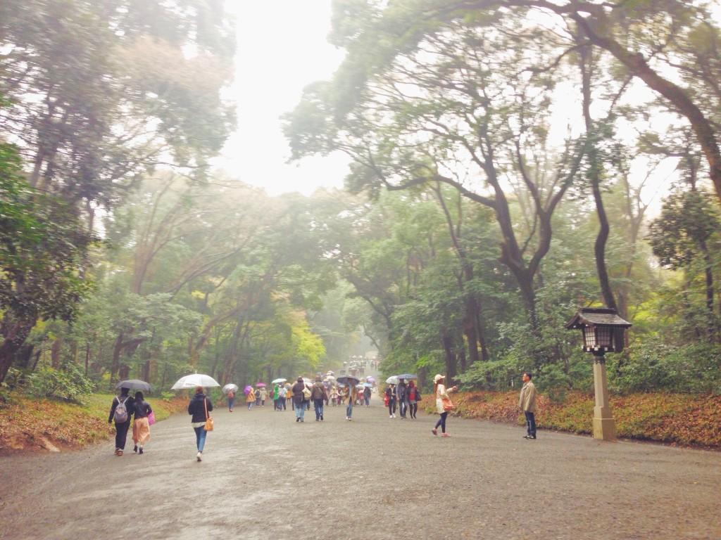 Il Parco Yoyogi che porta al Tempio Meiji-ju