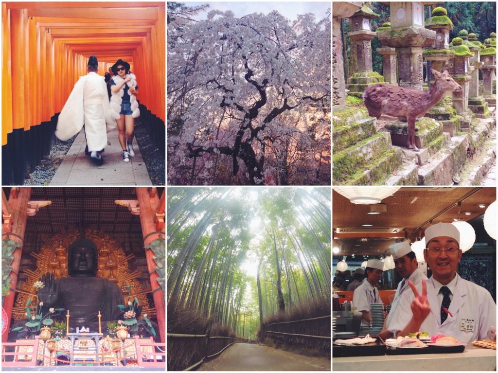 Il mio itinerario di 10 giorni in Giappone