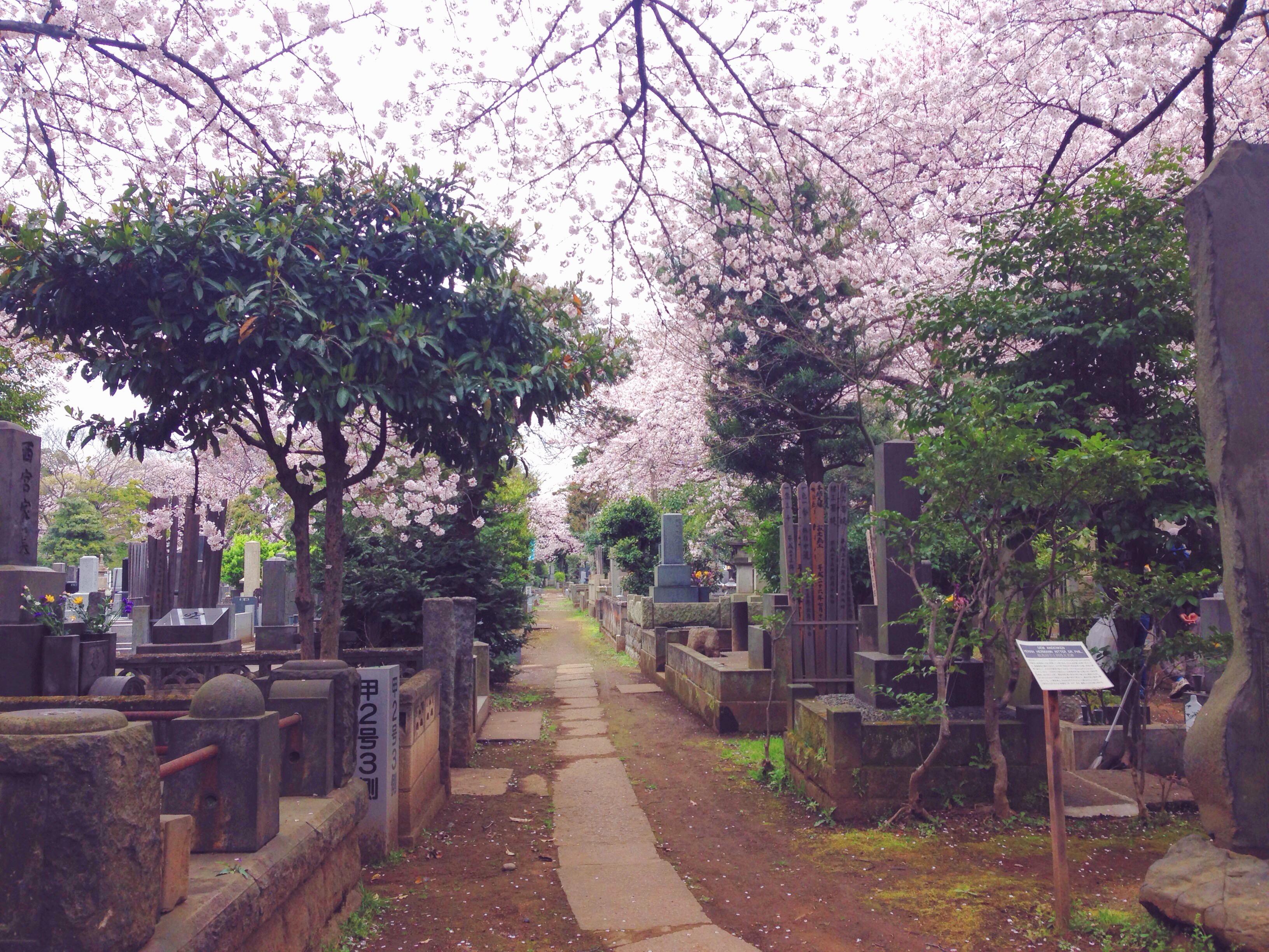 Yanaka-reien, il cimitero di Yanaka