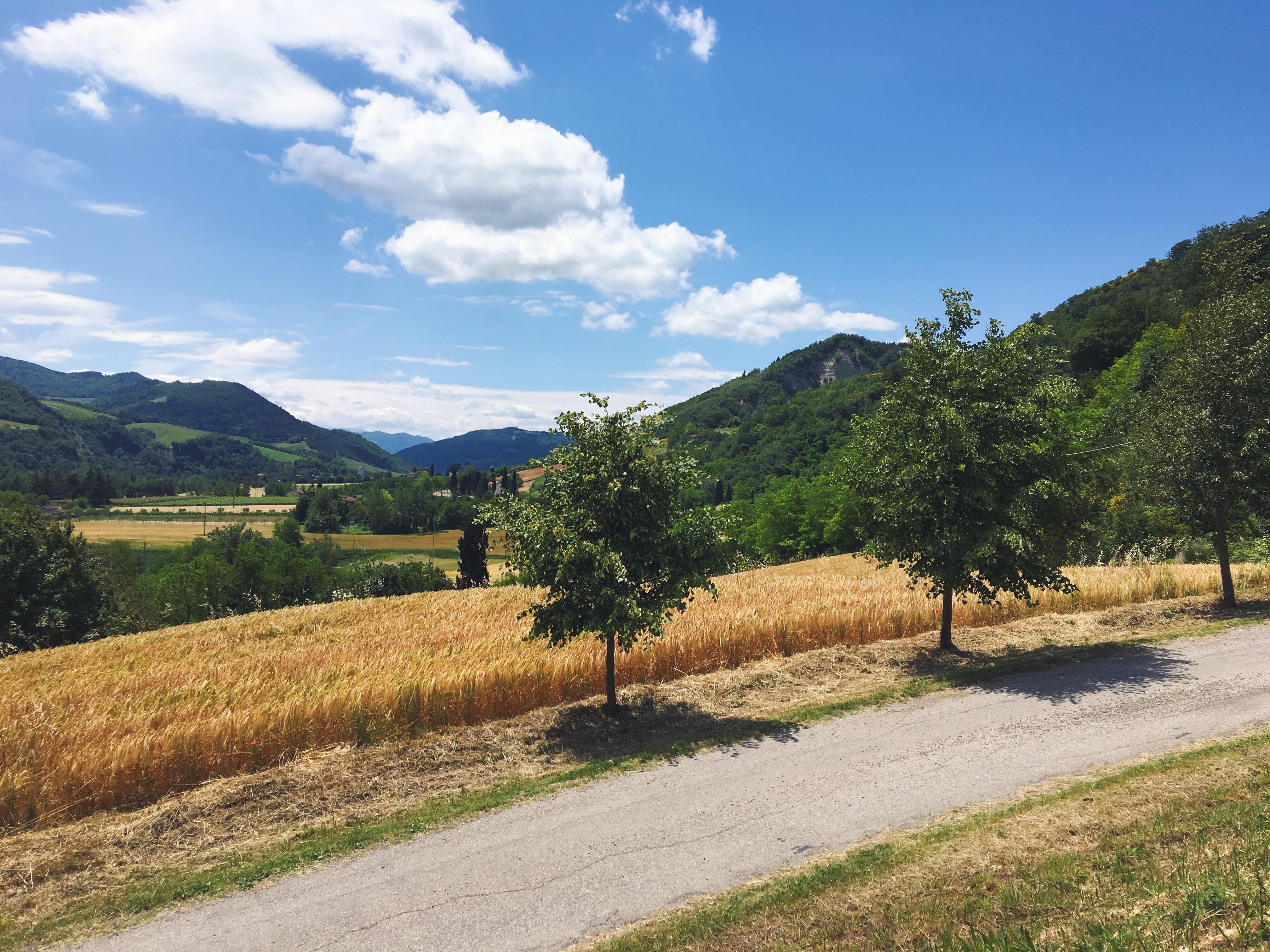 Le colline romagnole