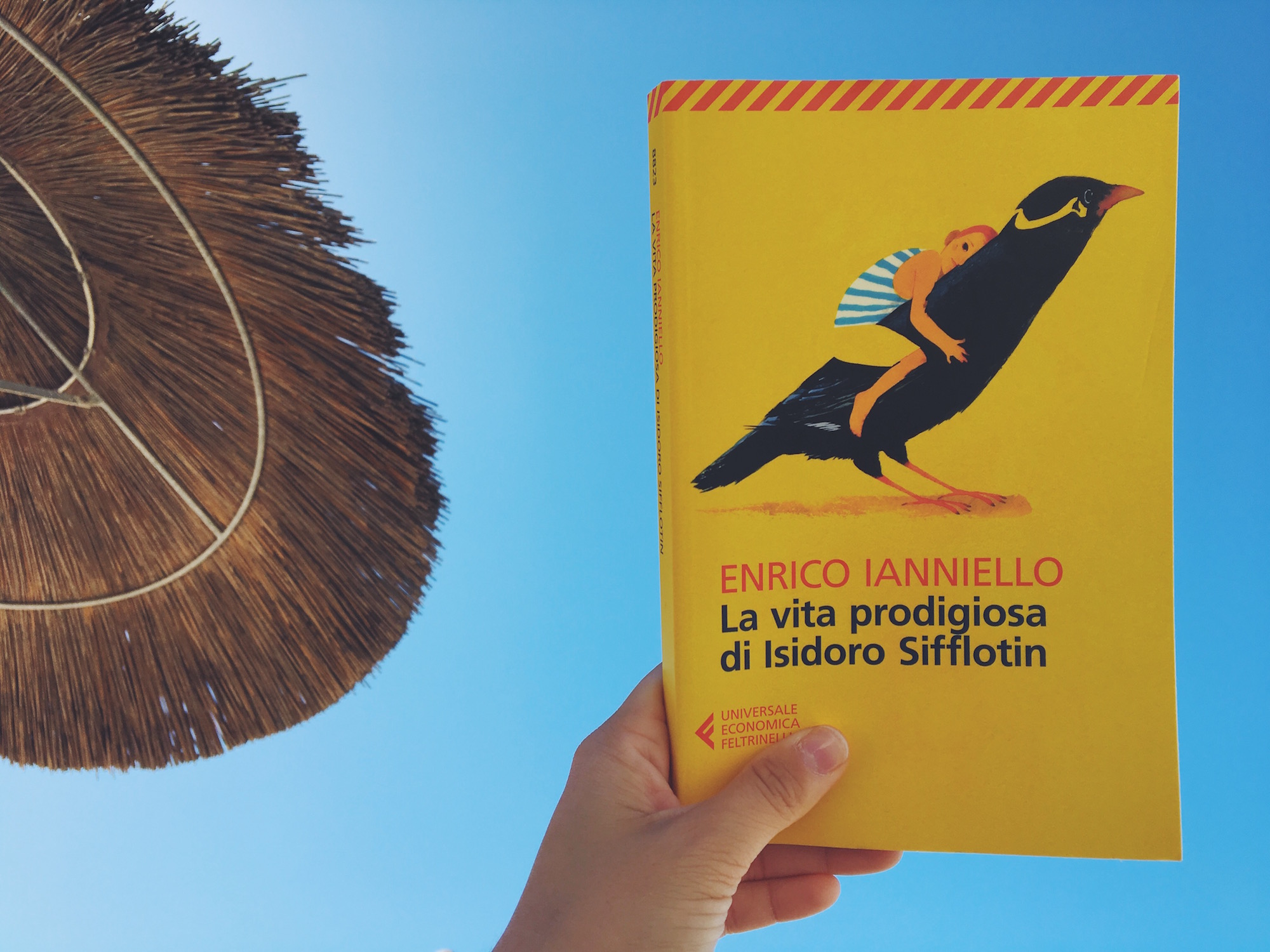 La vita prodigiosa di Isidoro Sifflotin - un libro felicissimo e tristissimo contemporaneamente