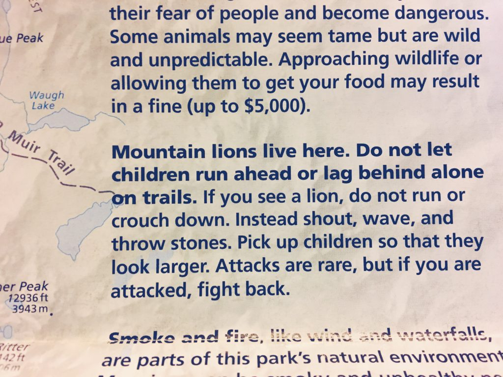 Cosa fare se se è attaccati da un puma