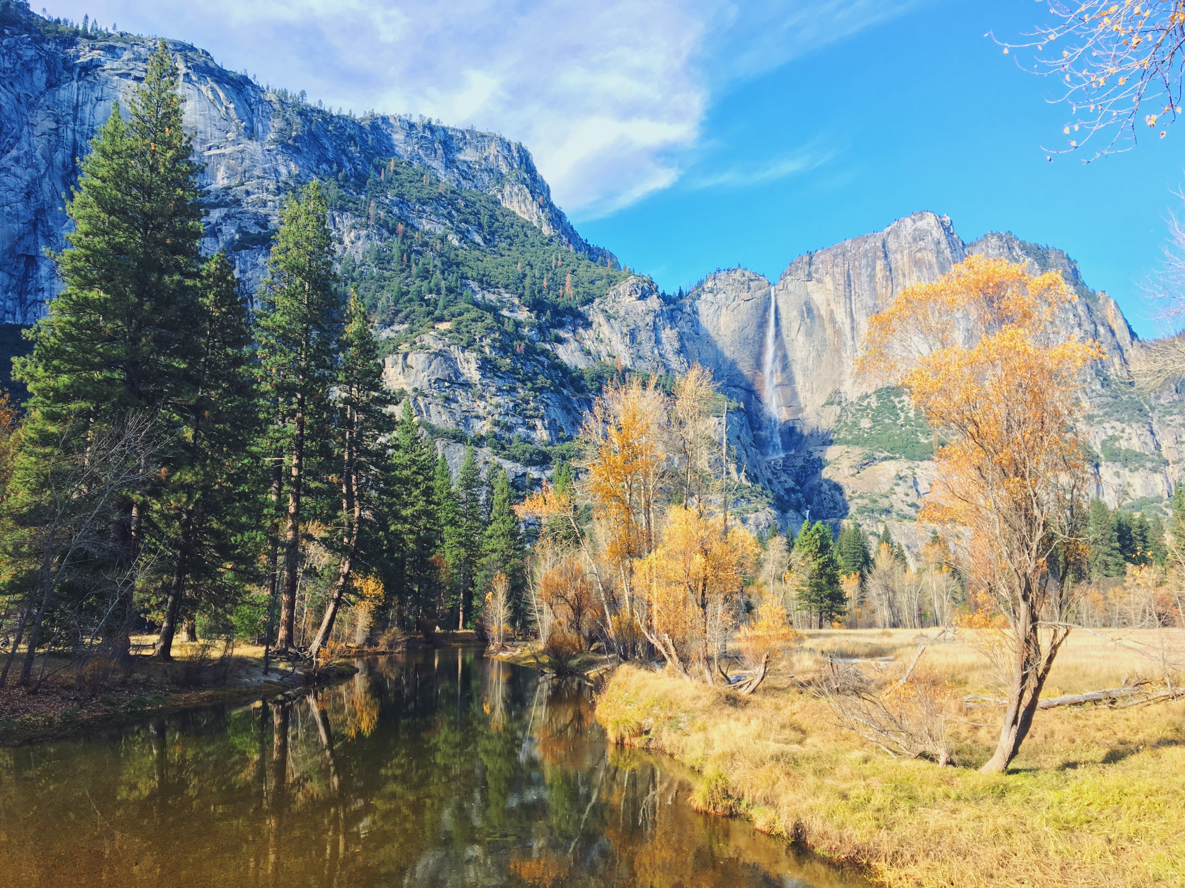 Merced river - Yosemite Park foliage - i colori dell'autunno