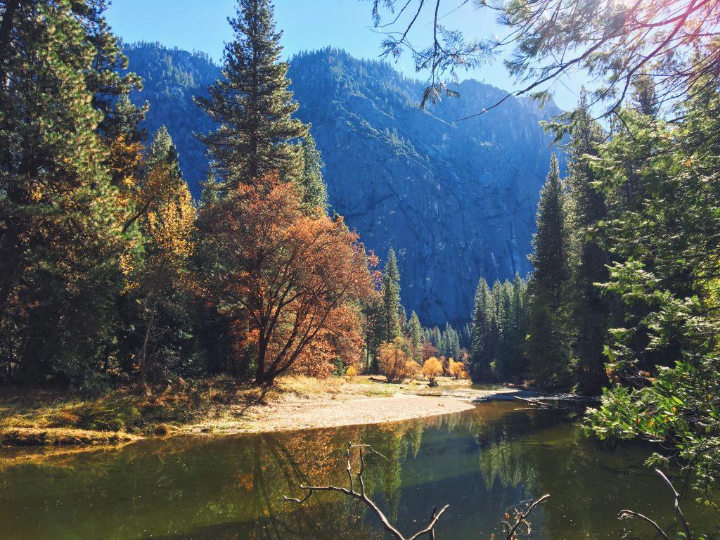 Merced river - Yosemite Park foliage - i colori dell'autunno