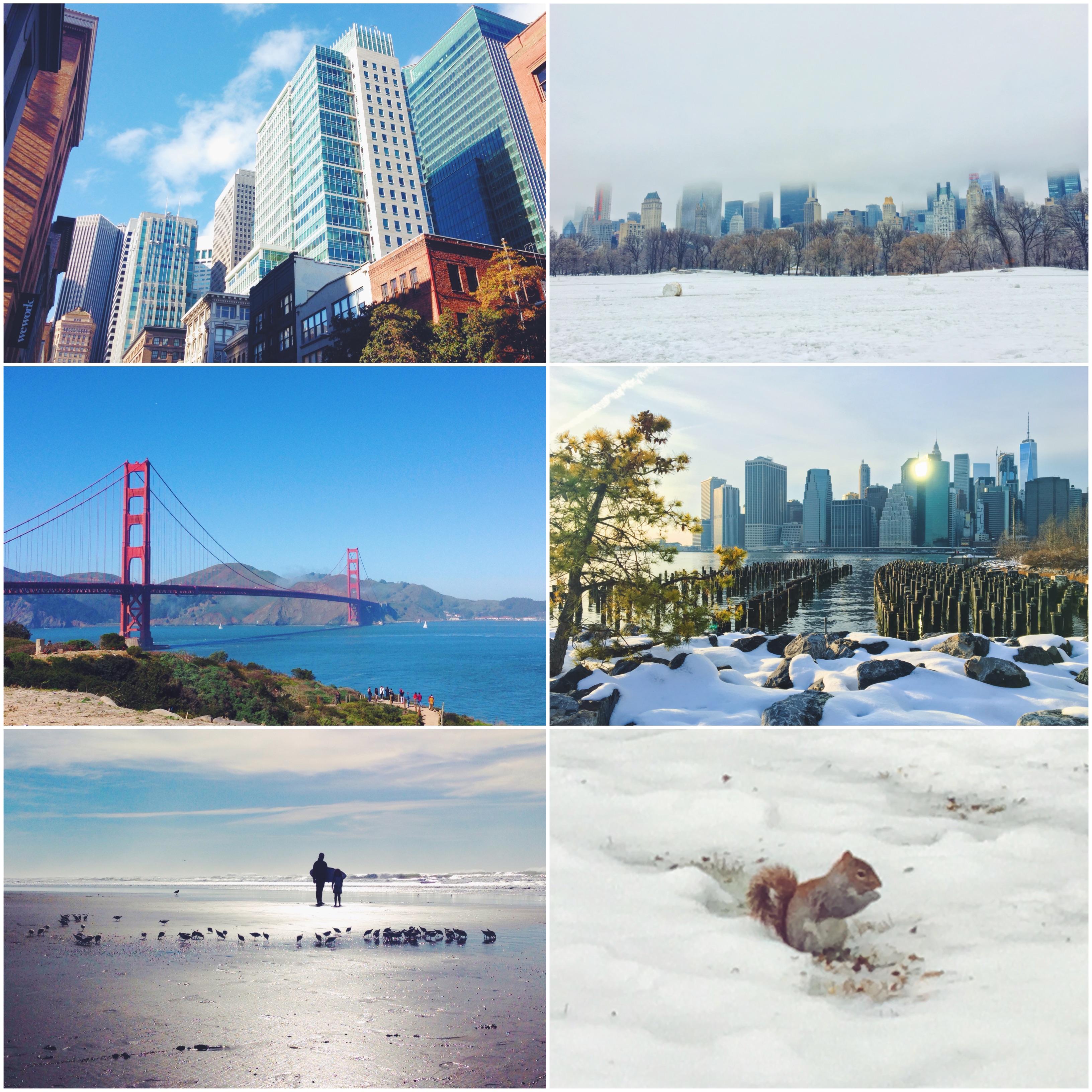 San Francisco ha un clima primaverile tutto l'anno, a New York fa freddissimo o caldissimo.