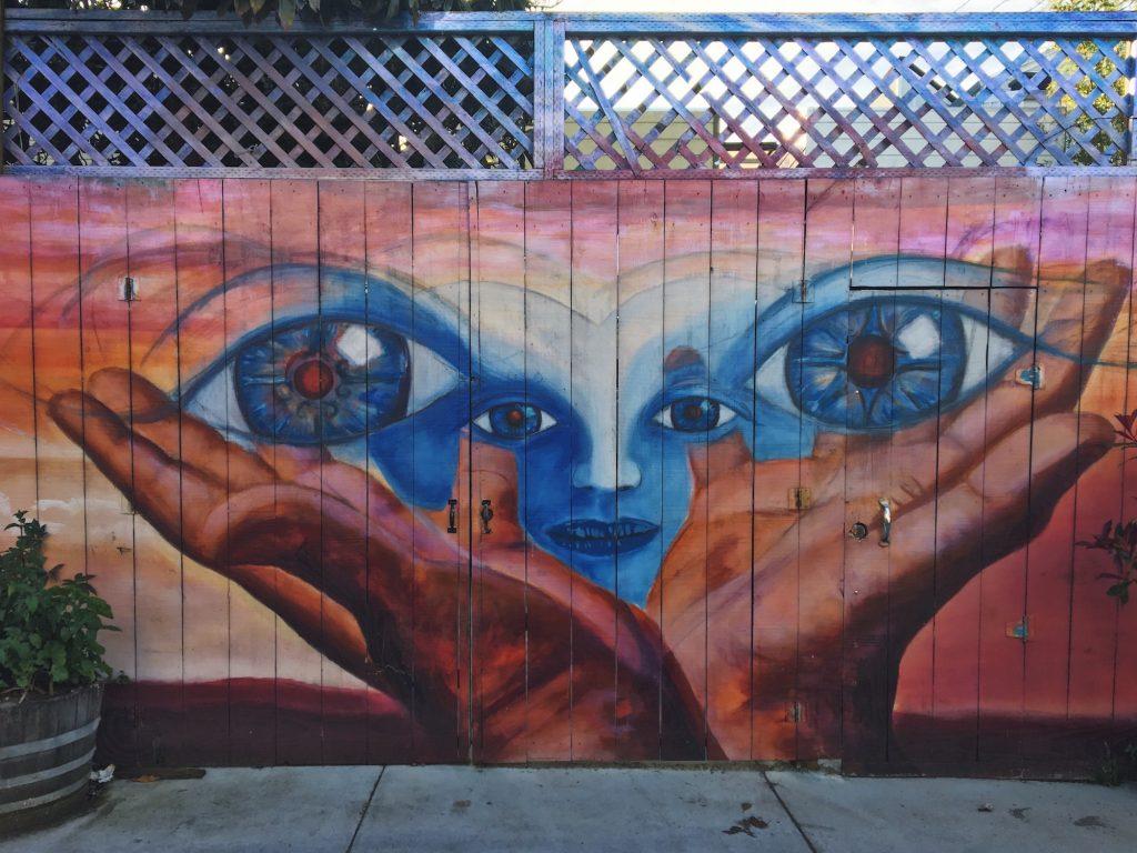 Balmy Alley - Murales nel quartiere Mission di San Francisco - Untitled