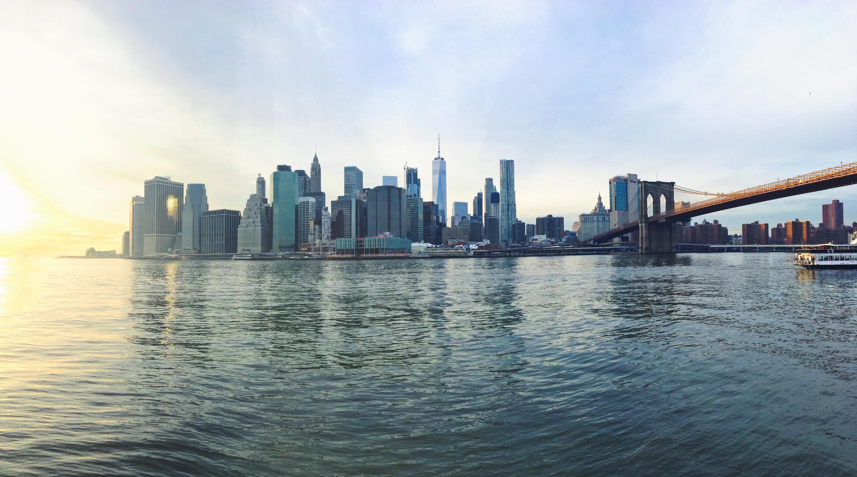 Skyline dei grattacieli di New York