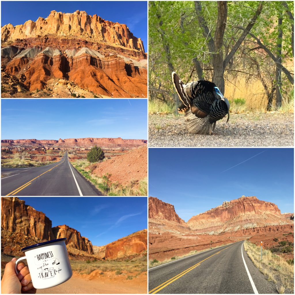 Cosa vedere a Capitol Reef