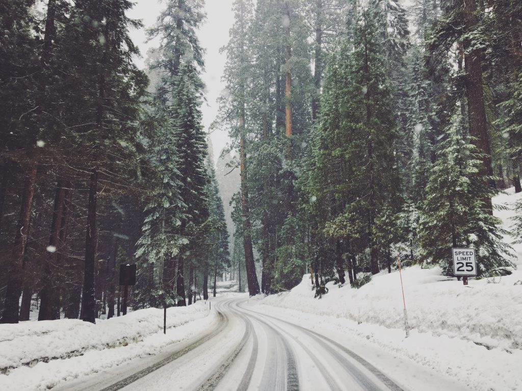 Il Sequoia National Park con la neve