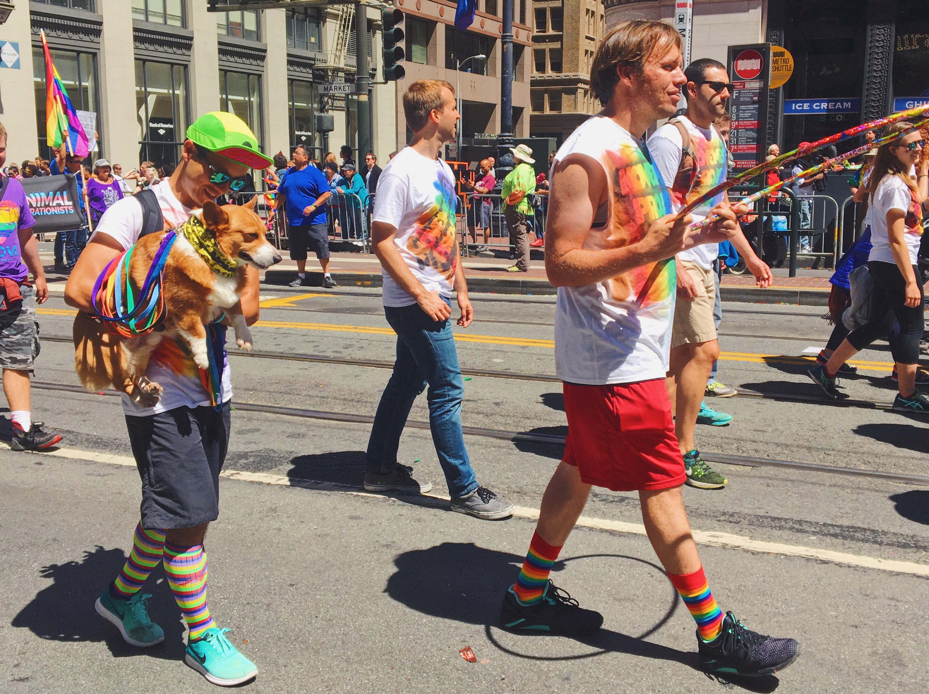 Cagnolino - L'evento migliore di San Francisco - la LGBTQ Pride Parade