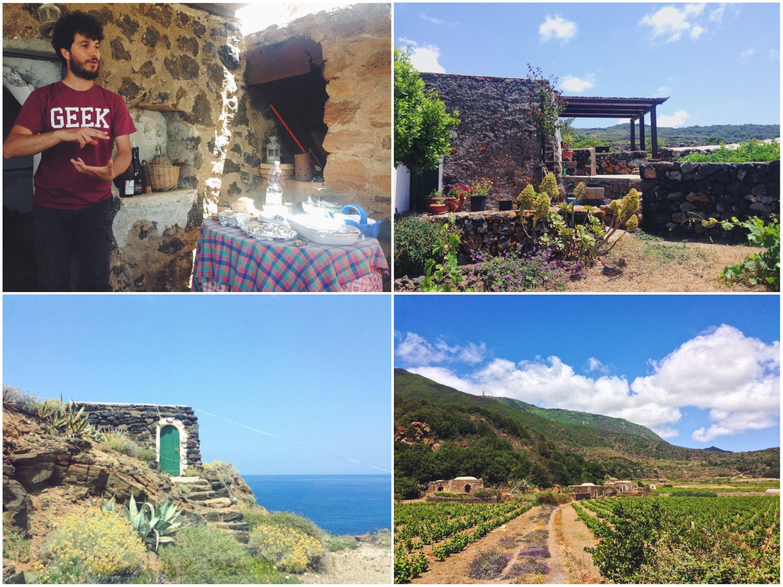 Contrada Kaffefi, le vignette pantesche e il vino di Francesco Ferreri - Cosa vedere (e cosa assaggiare) in una settimana a Pantelleria