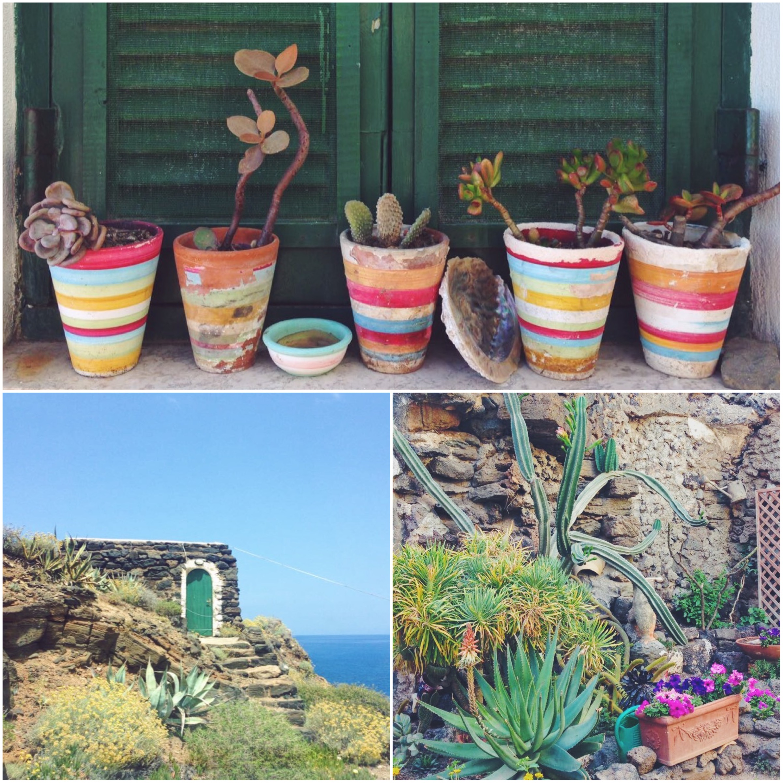 I colori di Pantelleria - Dammusi Le Case del Principe
