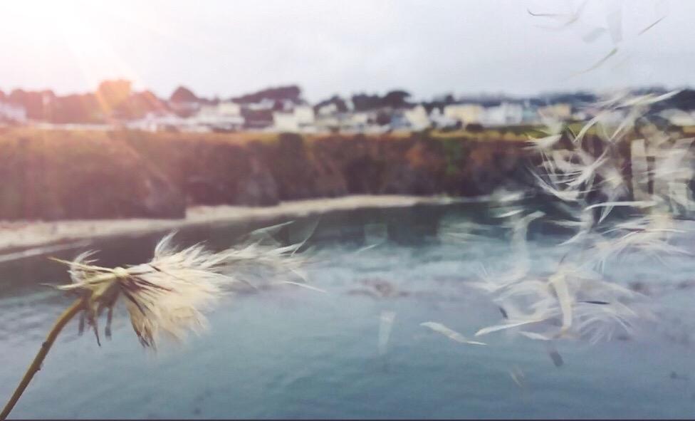 Alla scoperta di Mendocino la Cabot Cove di Jessica Fletcher che in realta e' in California