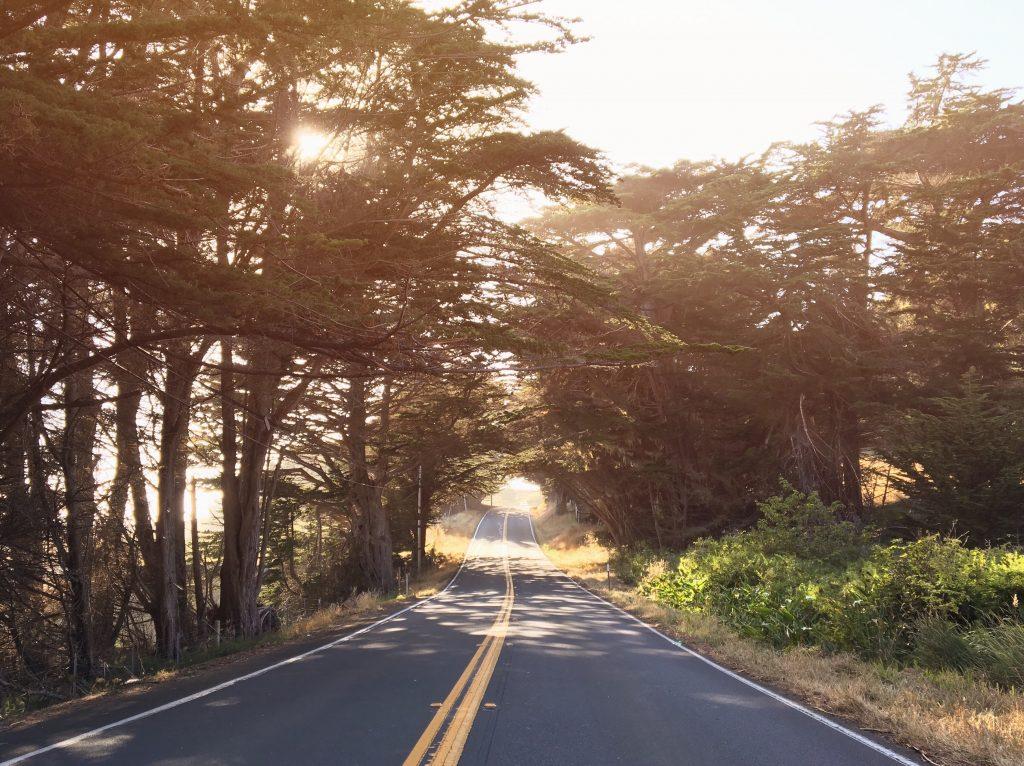 Come raggiungere Mendocino - strada oceanica highway 1