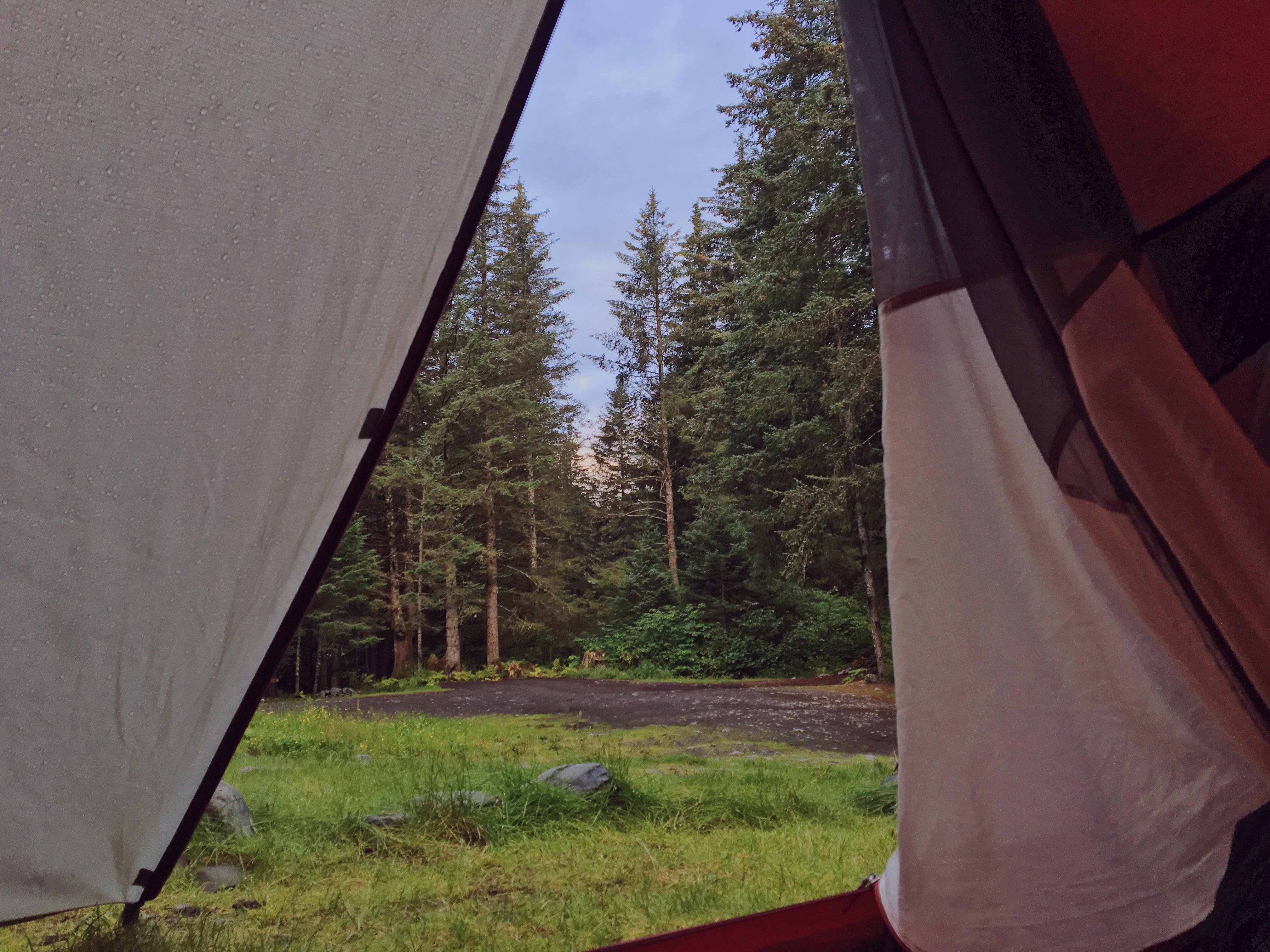 In tenda in mezzo alla foresta in Alaska